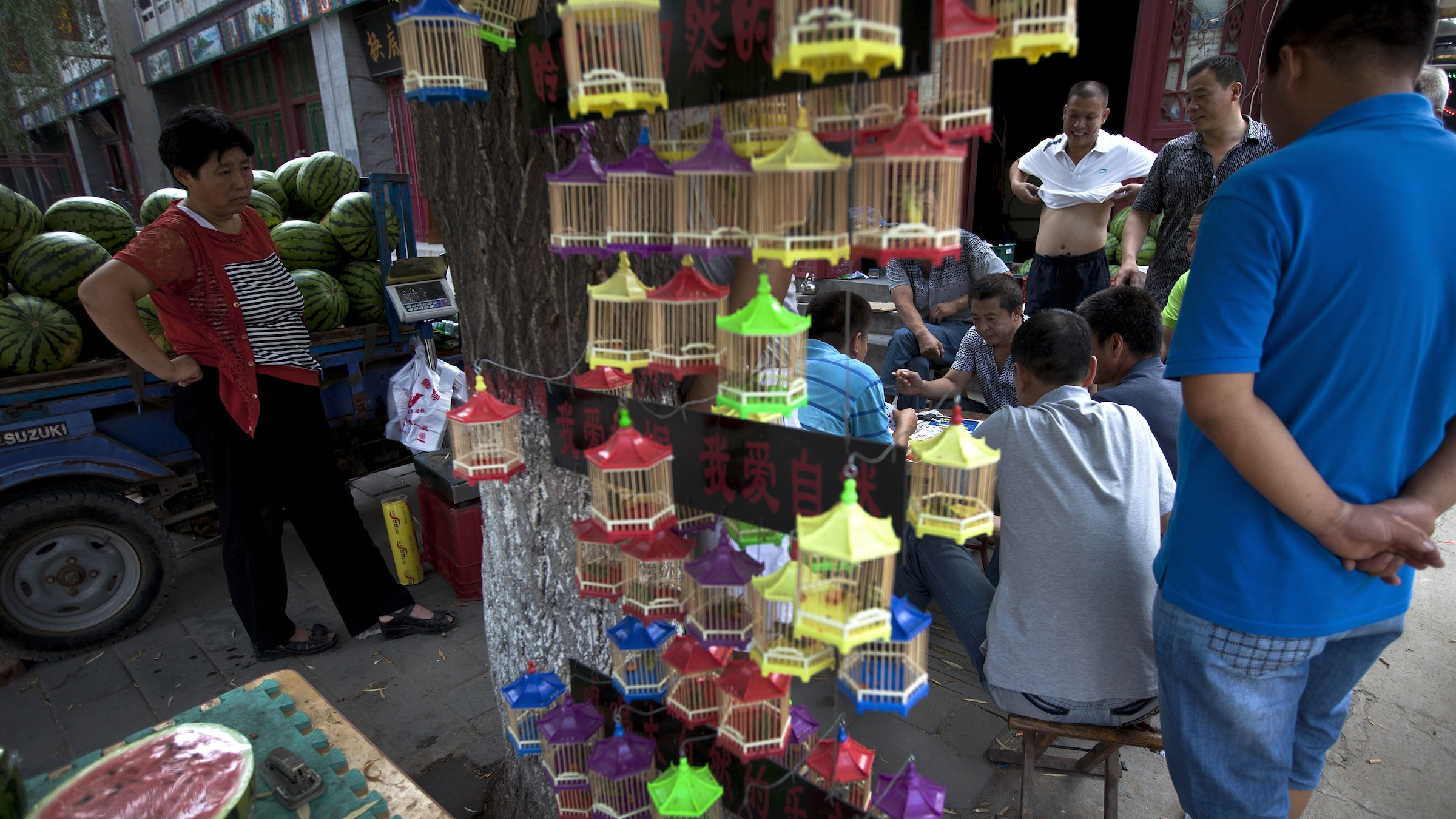 Chinese people play card games near a roadside store selling fruits and grasshopper in Zhengding county, North China's Hebei province Thursday, Aug. 30, 2012. (AP Photo/Andy Wong)