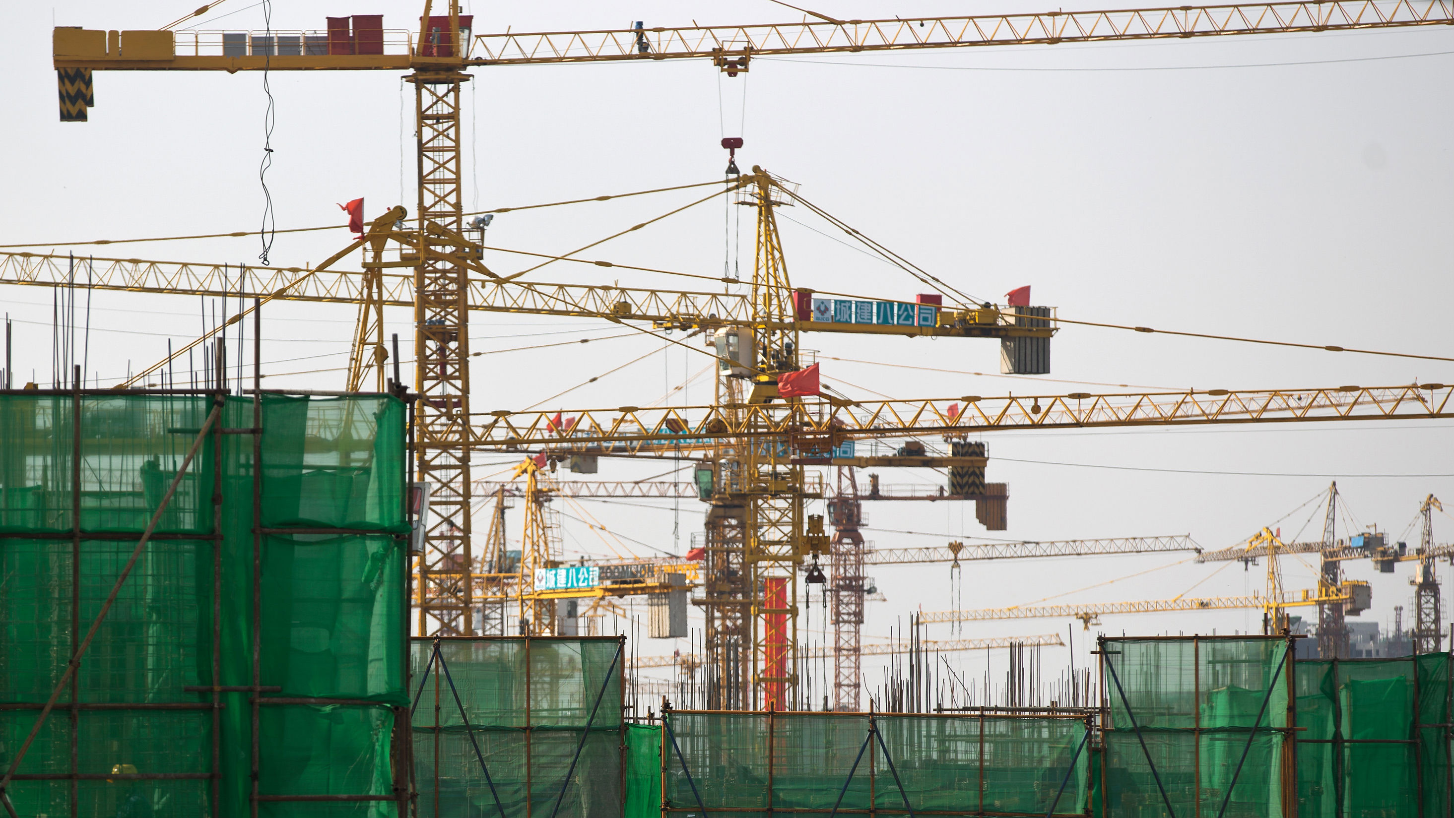 The cranes take to the skies once again