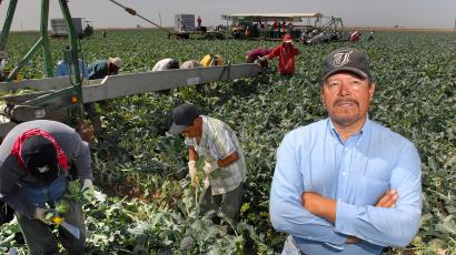 Francisco Chavez, owner of F. Chavez Harvesting LLC, stands in a broccoli field in Yuma, Ariz., Saturday, March 8, 2008. Chavez said his workers are mostly from Sonora, Mexico and Mexicali, Baja Calif. As a labor contractor in America's winter lettuce capital, Chavez struggles with the problem of getting enough people to pick and package produce. It's stories like these that are prompting lawmakers in Arizona and Colorado to seek permission to bring in their own temporary foreign employees rather than rely on a federal guest-worker program criticized as being slow and fraught with bureaucracy.