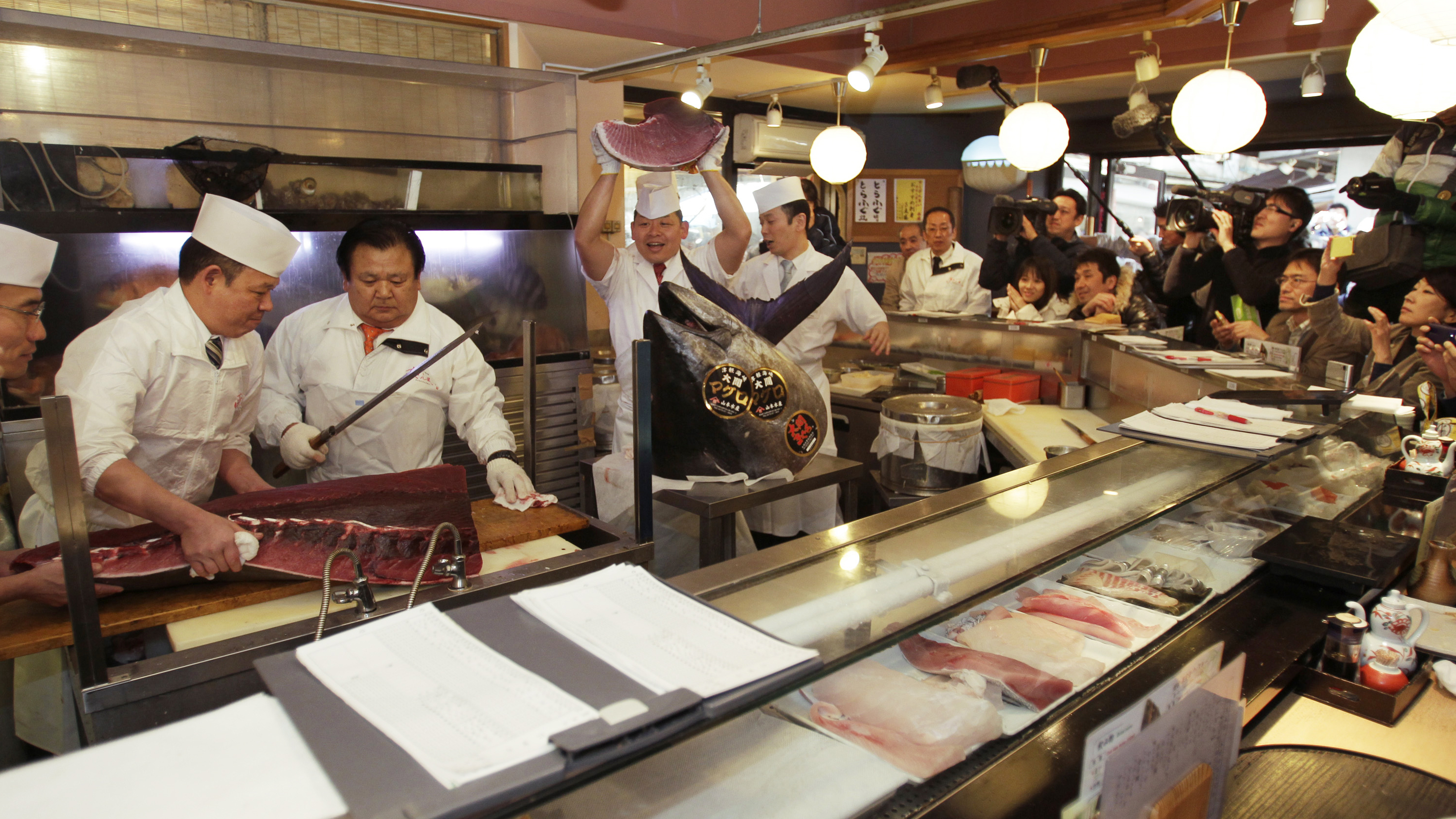 Record bluefin tuna