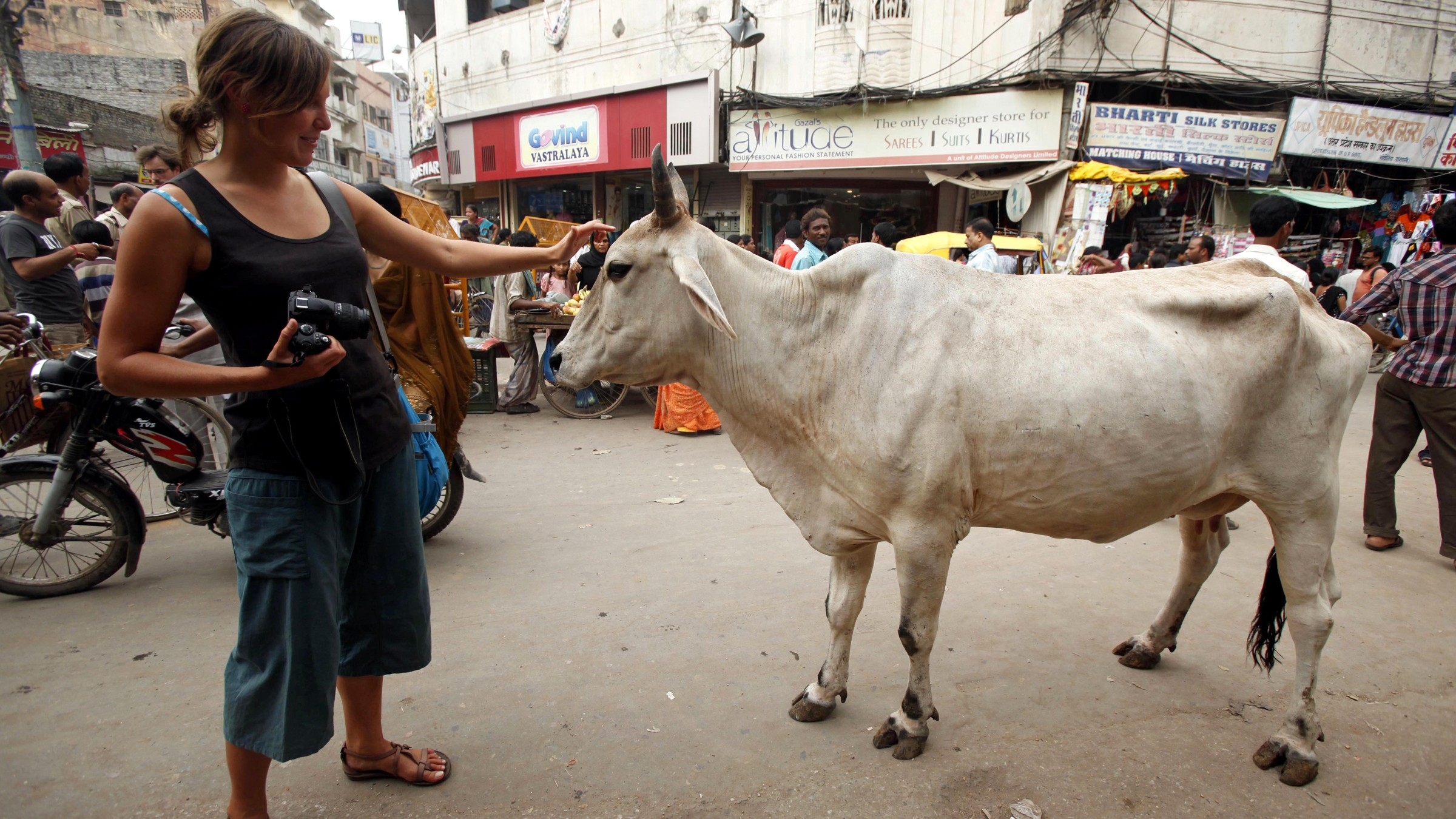 French tourist Alixe, 26, pets a cow on the banks of the River Ganges.