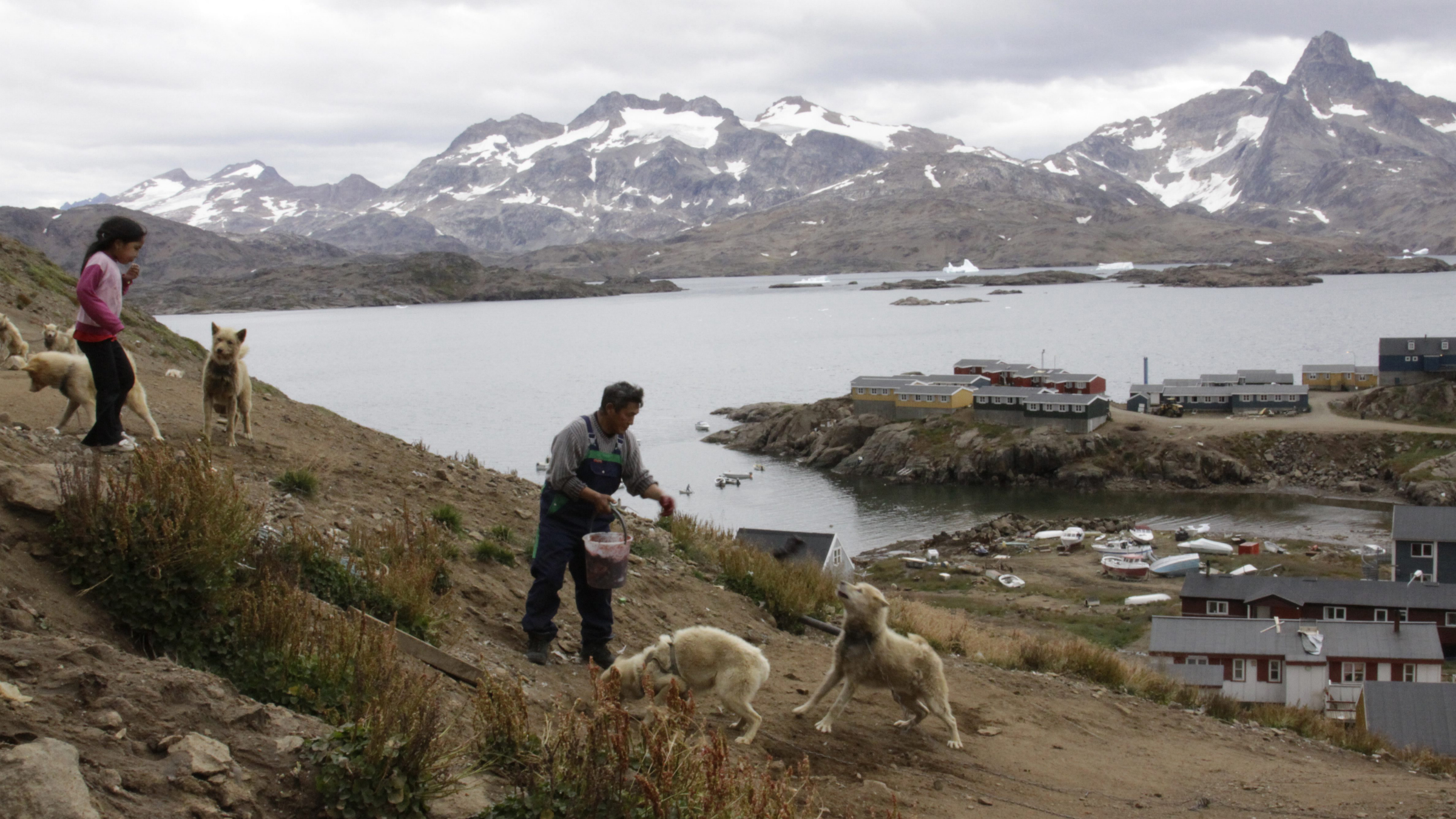 Gert Ignatiussen throws a chunk of seal meat to one of his sled dogs in Tasiilaq, an Inuit town on the southeast coast of Greenland, in this photograph taken on Aug. 25, 2009. Ignatiussen was the winner of Greenland's annual amateur mineral hunt, a competition that the local government hopes will spur Greenlanders to take interest in the hidden resources being uncovered by the Arctic thaw.