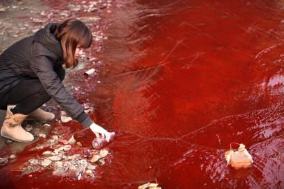 A journalist takes a sample of the red polluted water in the Jianhe River in Luoyang, Henan province December 13, 2011. According to local media, the sources of the pollution are two illegal chemical plants discharging their production waste water into the rain sewer pipes. Picture taken December 13, 2011. REUTERS/China Daily