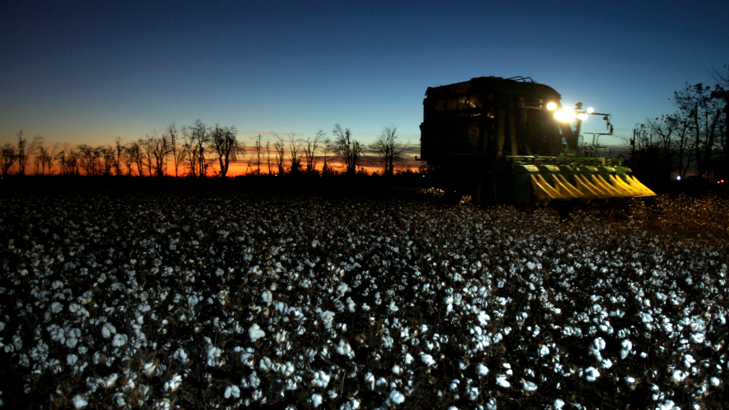 Rick Faulkner and his wife Cindy pick cotton on their land Wednesday, Nov. 11, 2009, in New Madrid, Mo.  The Faulkner's land sits at the bottom of Missouri's boot heel, an area that connects this Midwestern state to the Mississippi Delta and where the federal government pumps more than $12 million a year in cotton subsidies.