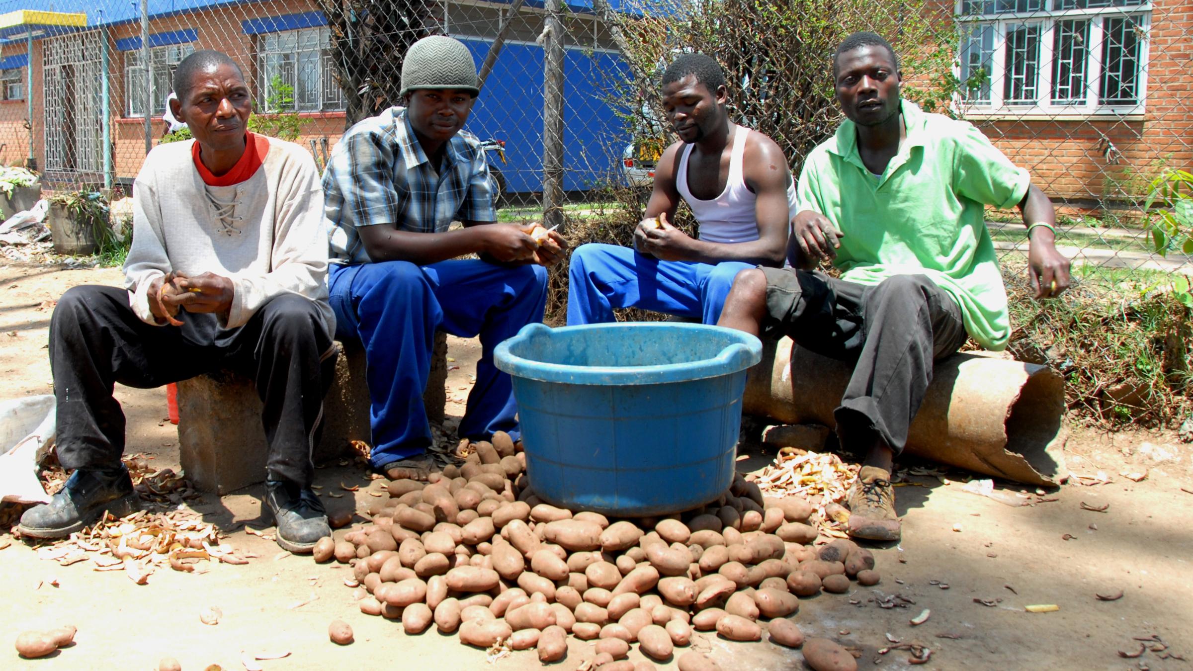 malawi rural jobs migrants