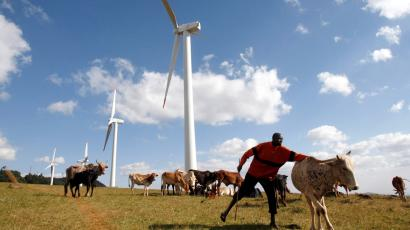A Masaai herdsman looks after his cattle near the power-generating wind turbines at the Kenya Electricity Generating Company (KenGen) station in Ngong hills, 22 km (13.7 miles) southwest of Kenya's capital Nairobi, July 17, 2009. Kenya plans to add 2,000 megawatts of more environmentally-friendly energy by 2013 by investing $7-$8 billion, a KenGen official said on Friday. KenGen is setting up some wind turbines and a private company is planning a 300 MW wind farm in Kenya's northeastern region by 2012.