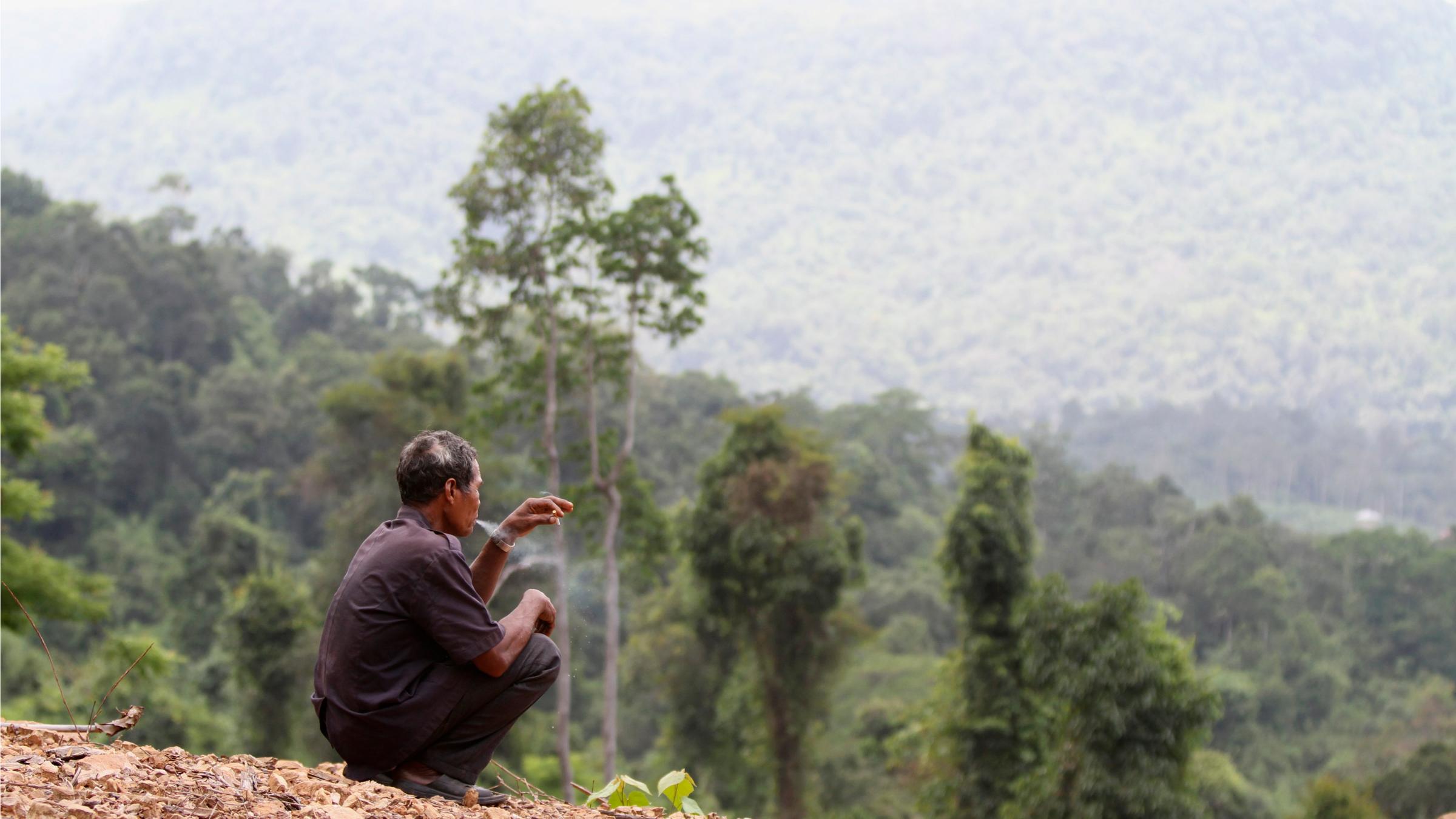 Man looks out onto vegetation