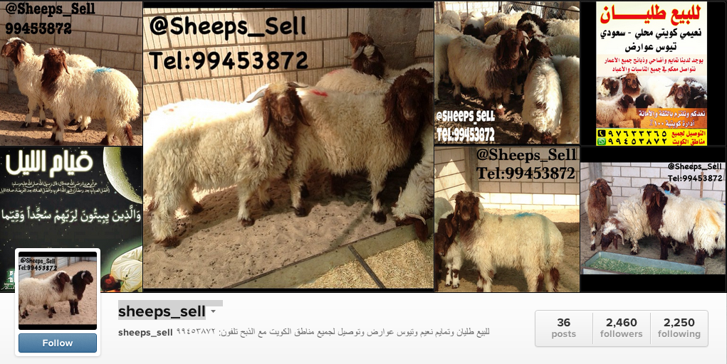A rising class of Instagram entrepreneurs in Kuwait is selling