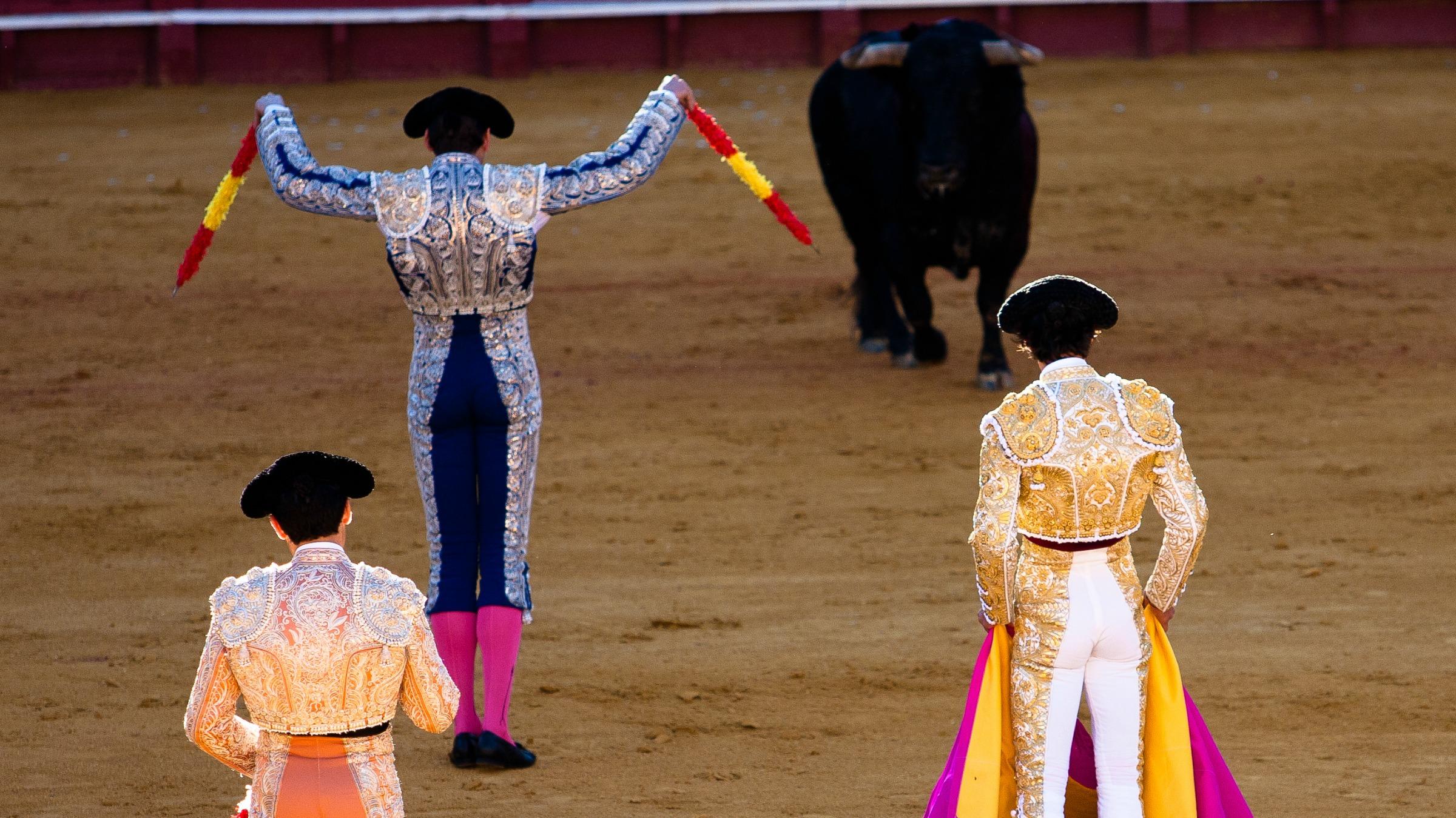 Arbour - bullfighting