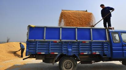 Farmers load corn kernels onto a truck in Zouping county, Shandong province March 26, 2013. China is likely to import a record volume of corn in the next marketing year, as the world's second-largest consumer takes advantage of a fall in global prices and after the domestic crop suffered damage from mould and wet weather delayed plantings. Picture taken March 26, 2013. REUTERS/Stringer