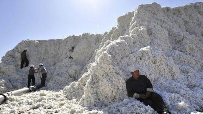 Workers stack cotton at a cotton purchase station in Manas county, Xinjiang Uighur Autonomous Region October 11, 2008. Xinjiang Uighur Autonomous Region, the largest cotton producing region in China, plans to expand wheat and corn planting areas while cutting down cotton sown areas, Xinhua News Agency said. REUTERS/China Daily