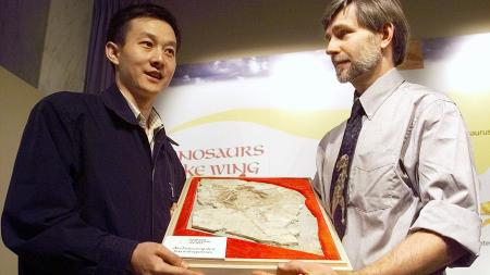 """Beijing paleontologist Xu Xing and Steven Czerkas, of the Dinosaur Museum in Blanding, Utah, hold a """"Missing Link"""" fossil Friday, Oct. 15, 1999, at a news conference at the National Geographic Society in Washington. Fossils of the animal, called Archaeoraptor liaoningensis, suggest that it lived 120 million to 140 million years ago when a branch of dinosaurs was evolving into the vast family of birds that now live on every continent. (AP Photo/Dennis Cook"""