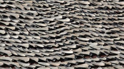 Over ten thousand pieces of shark fins are dried on the rooftop of a factory building in Hong Kong January 2, 2013. Local sales of the luxurious gourmet food have fallen in recent years due to its controversial nature, but activists demand a total shark fin ban in the city, labelled by some as the shark fin capital of the world. The fins were shipped from an unknown location and unloaded at a nearby pier to be dried on the rooftop. REUTERS/Bobby Yip