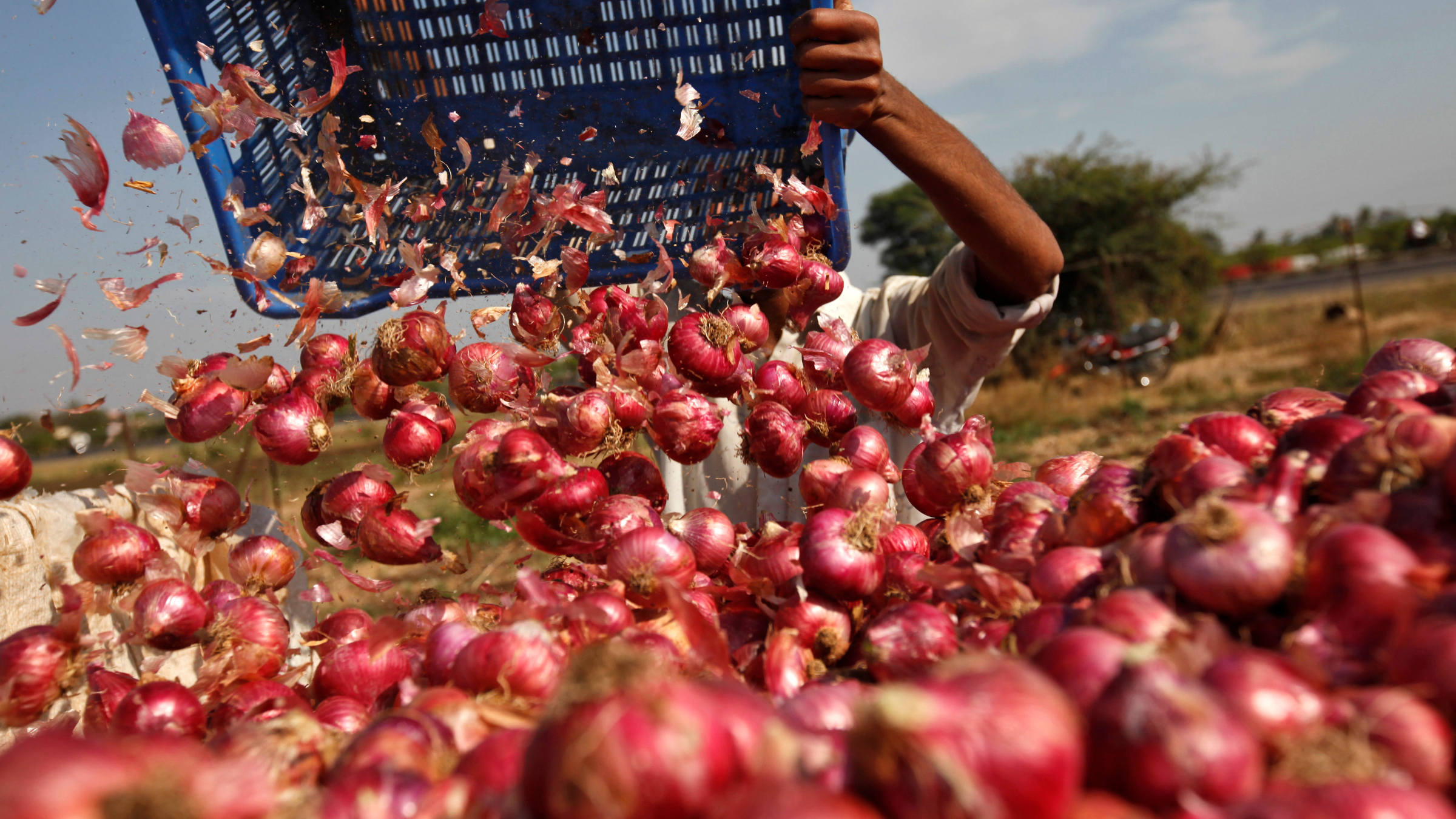Onions could be India's next political hot potato.