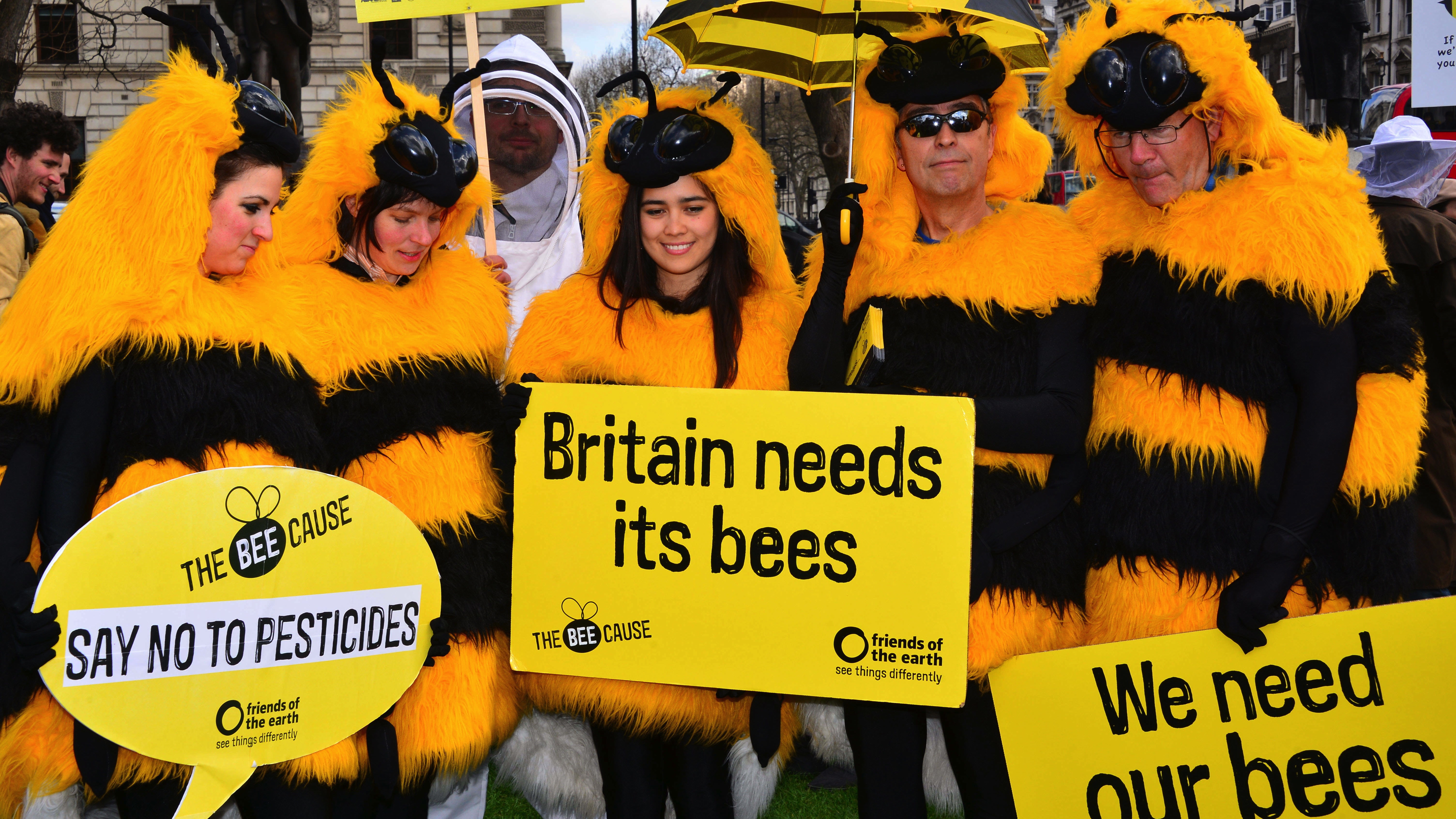 London bees