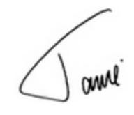 Jamie Dimon signature