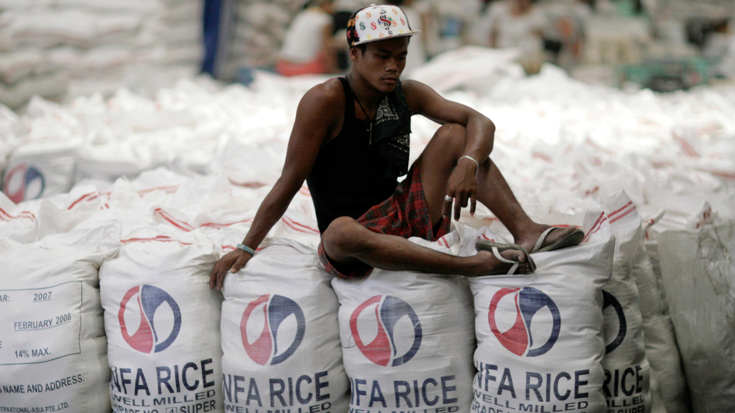 Rice Philippines Typhoon Haiyan