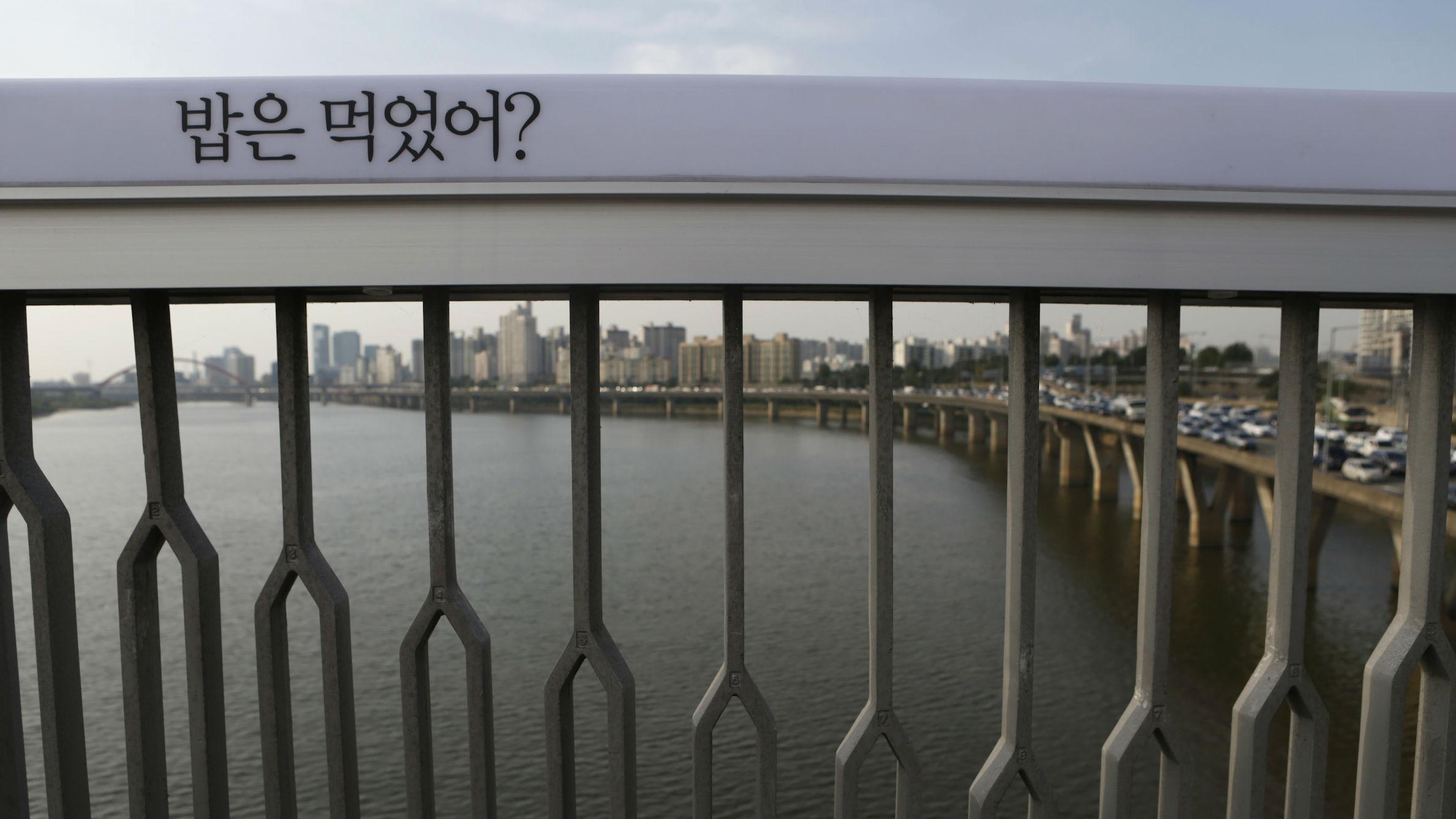 south korea bridge web