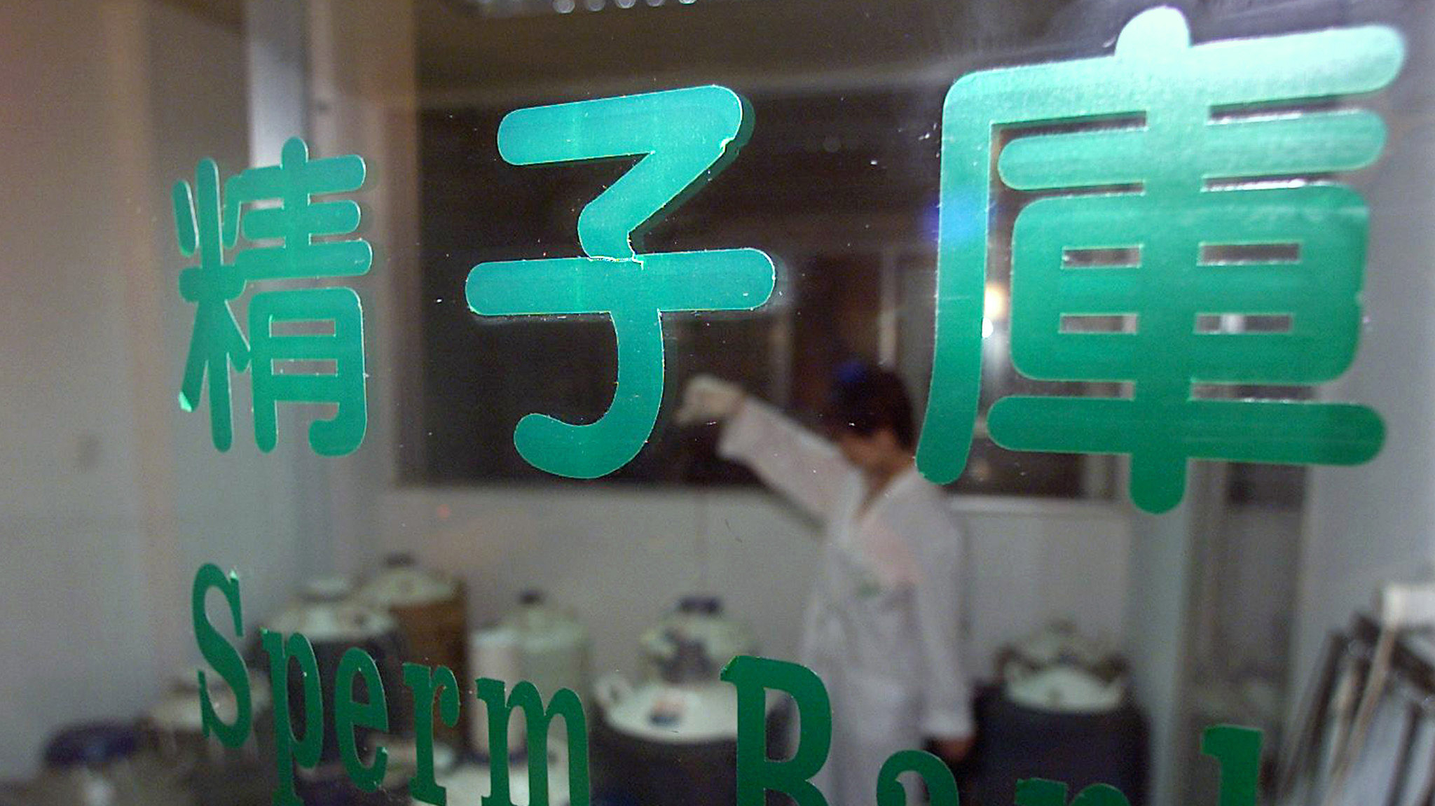 """A Chinese laboratory assistant works at a panda sperm bank in the giant panda breeding research centre in Chengdu, Sichuan province, September 19, 2001. Since the first cub was artificially conceived in 1963, more than 210 have been born in China and 20 overseas. But only half have survived to adulthood. Chinese scientists are fighting the main cause of the giant panda's decline -- the rapid destruction of the natural bomboo forests. Only about 1,000 pandas survive in the wild. Chinese characters read """"Sperm Bank"""". Picture taken September 19, 2001."""