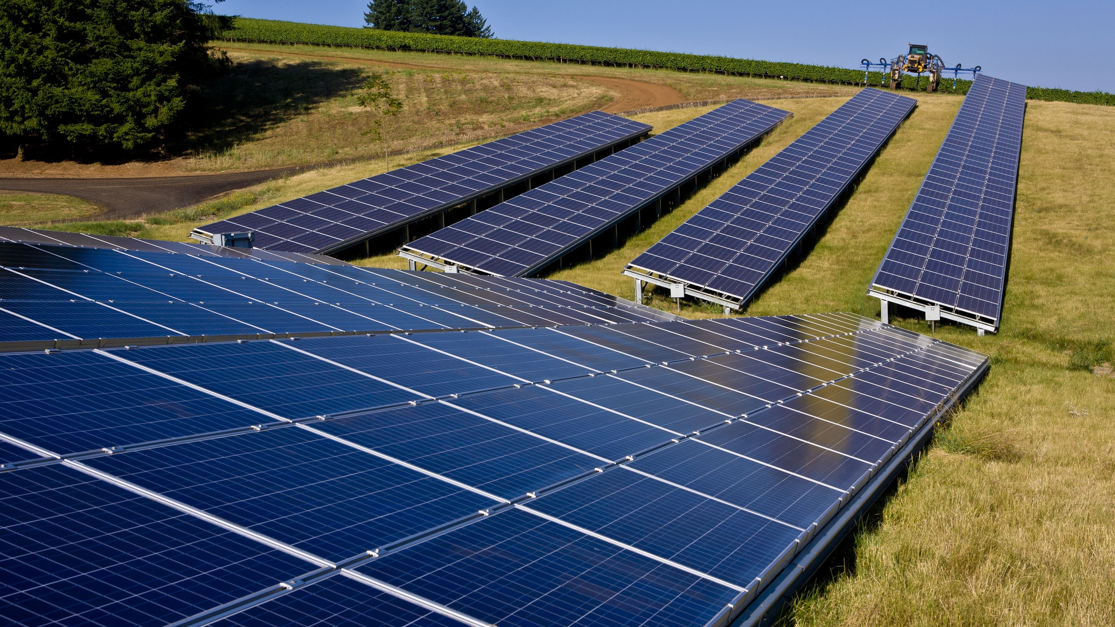 McMINNVILLE, OR - JULY 25:  An array of solar panels, located in a vineyard at Domaine Drouhin in the Dundee Hills, is viewed on July 25, 2012, near McMinnville, Oregon.  The cities of McMinnville and Newburg, located in the Willamette Valley wine appellation, are the epicenter of Oregon's wine production. (Photo by George Rose/Getty Images)