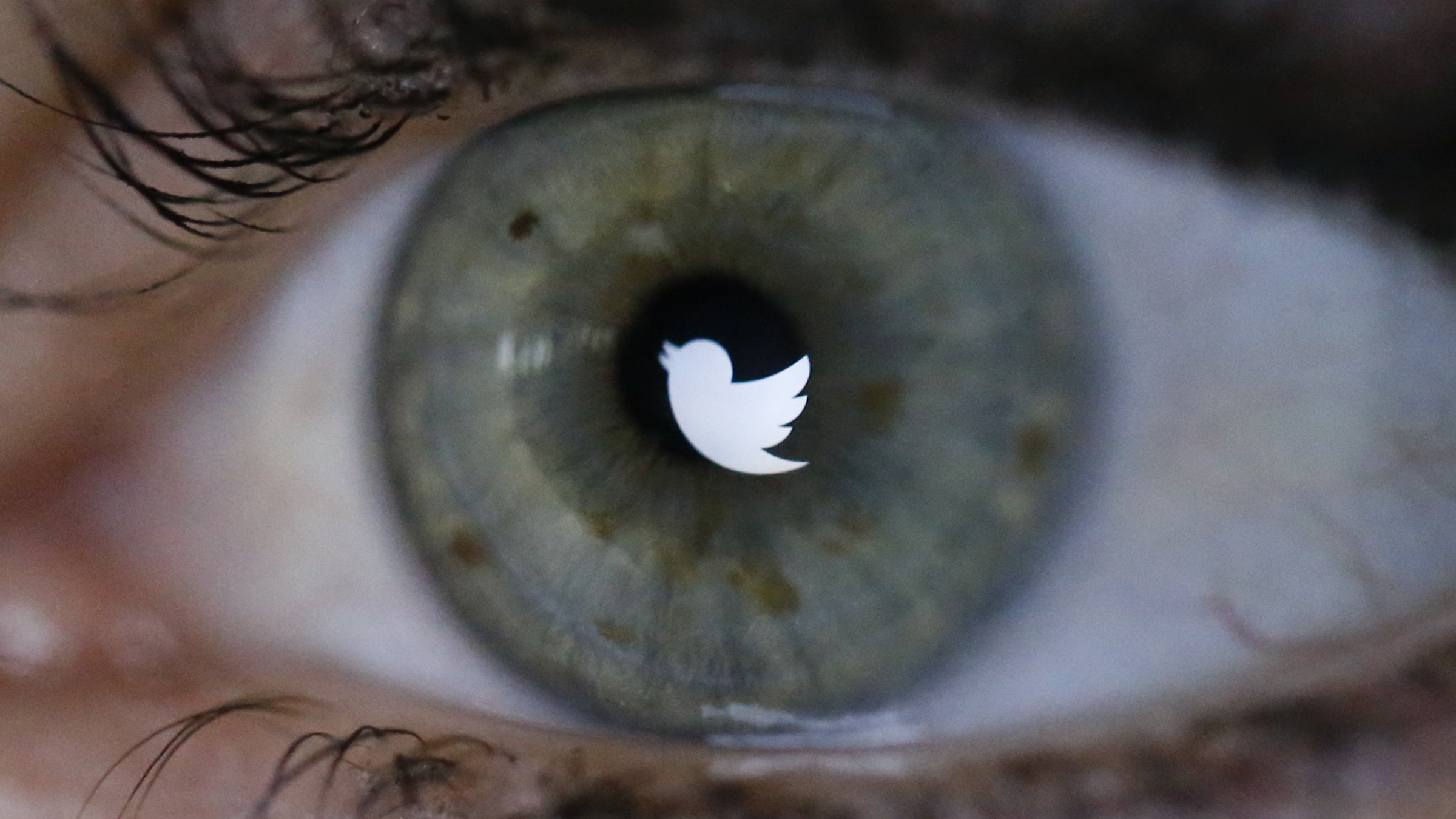 An illustration picture shows the Twitter logo reflected in the eye of a woman in Berlin, November 7, 2013. Twitter Inc priced its initial public offering above its expected range to raise at least $1.8 billion, in a sign of strong investor demand for the most highly anticipated U.S. public float since Facebook Inc.       REUTERS/Fabrizio Bensch (GERMANY - Tags: BUSINESS TELECOMS) - RTX153N0