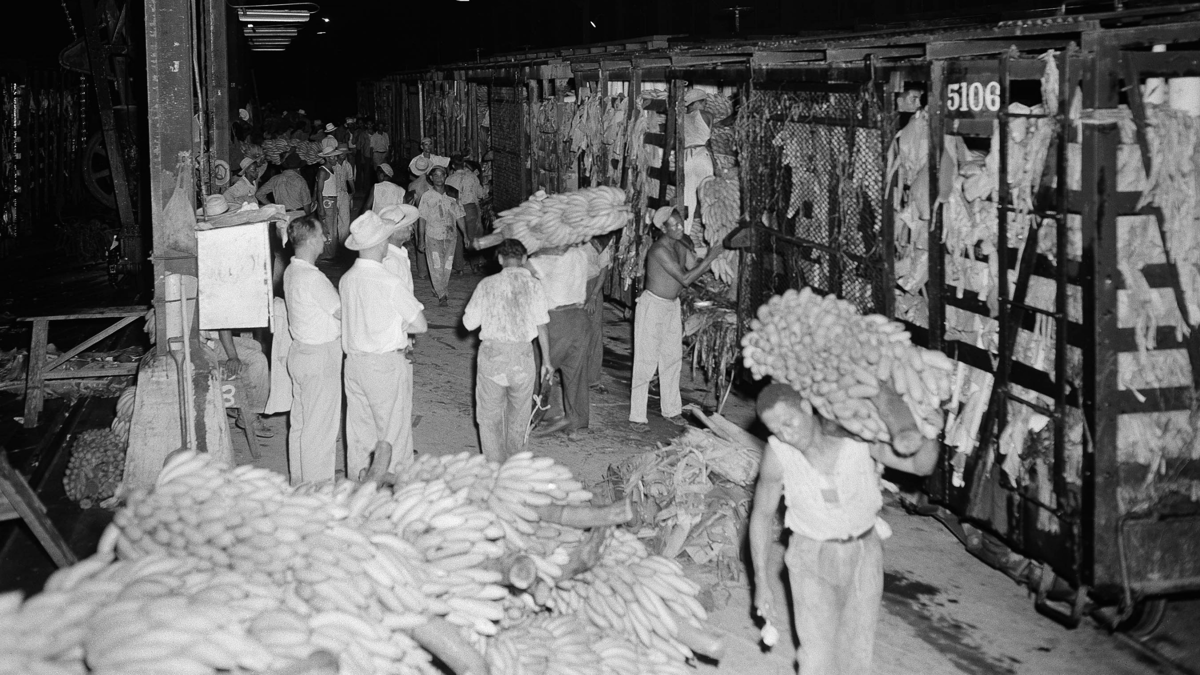 Banana loaders unload a car of bananas of the first shipment at the United Fruit Company docks for transfer to a waiting ship in Puerto Cortes, Honduras on Sept. 3, 1954. About 34,000 bunches made up the first shipment in over two months. In the foreground are bunches of bananas rejected for shipment because of over-ripeness. These will be given to workers for their consumption. (AP Photo