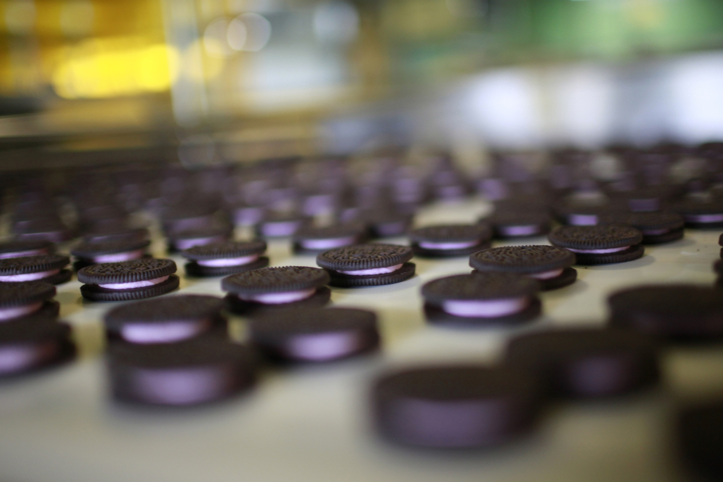 """Freshly-baked Oreo cookies pass along a conveyor belt at a Kraft Foods' factory in Suzhou, Jiangsu province May 30, 2012. Investment may be powering the Chinese economy but experiments like Oreo's gum cookie, a cookie with a glob of gum sandwiched neatly between a pair of Oreo's iconic dark chocolate biscuits instead of the creamy white """"stuff"""", which for better or worse never made it to store shelves, are a reminder that consumption is rising sharply. That means it is vital for food companies to get the right products into the market, particularly with demand dimming in the United States and Europe. Picture taken May 30, 2012. To match story CHINA-LOCALISATION/OREOS REUTERS/Aly Song (CHINA - Tags: BUSINESS FOOD SOCIETY) - RTR337WF"""