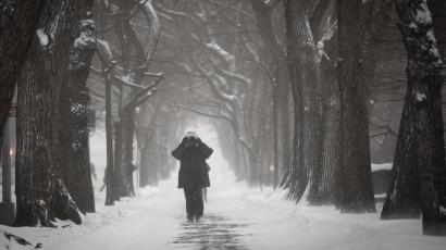 A man walks up 5th Avenue at Central Park as it snows in New York, January 3, 2014. A major snowstorm producing blizzard-like conditions hammered the northeastern United States on Friday, causing more than 1,000 U.S. flight delays and cancellations, paralyzing road travel, and closing schools and government offices. REUTERS/Carlo Allegri