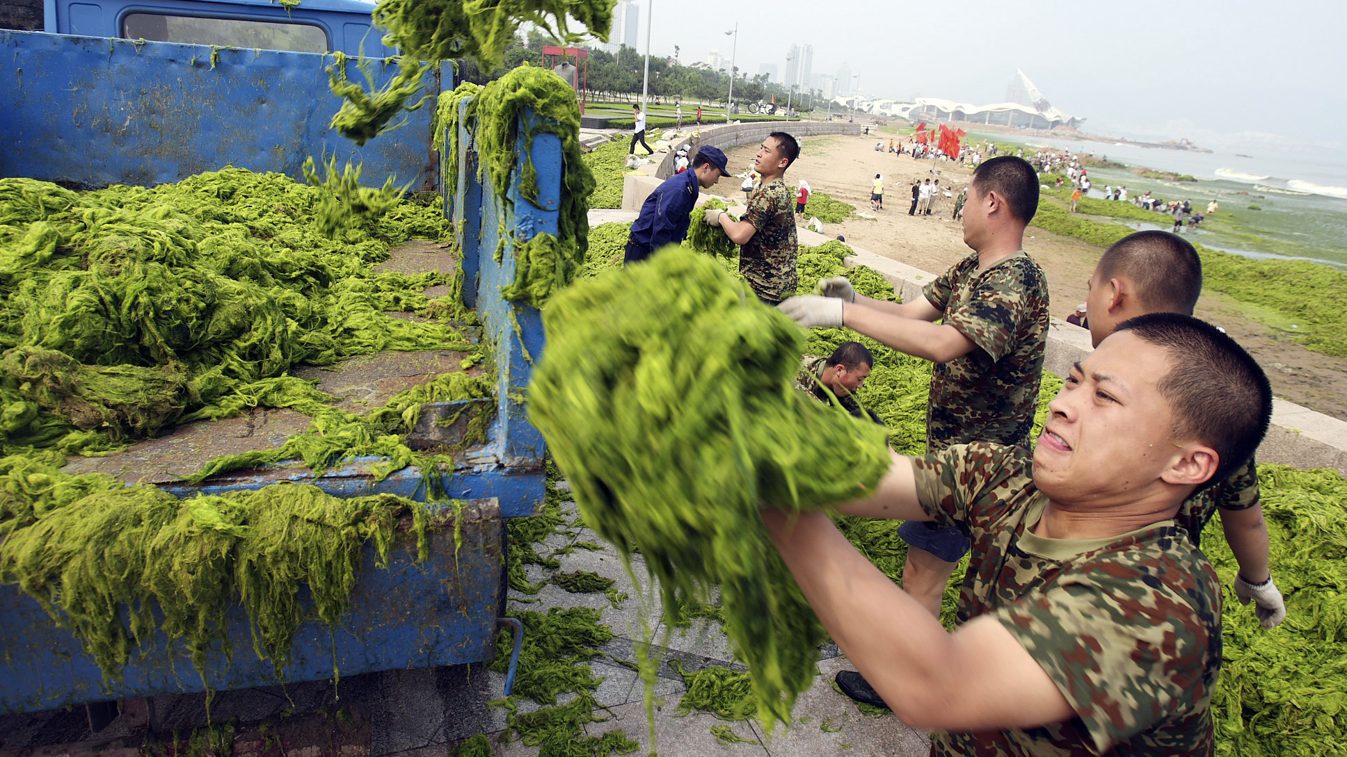 Spewing sewage into the ocean is bad: toxic algae and man