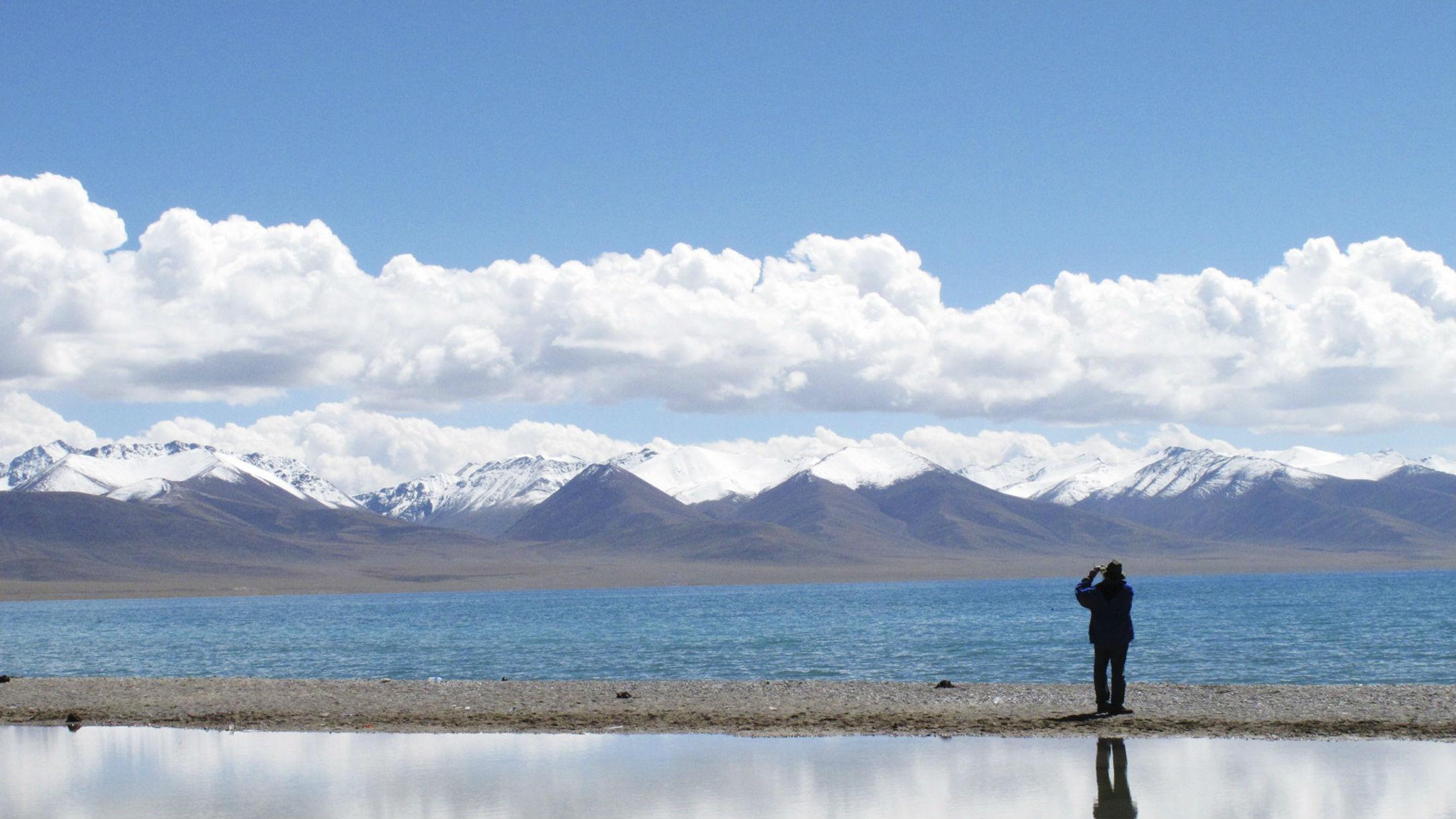 tibetan plateau web