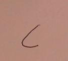 Gregg shorthand