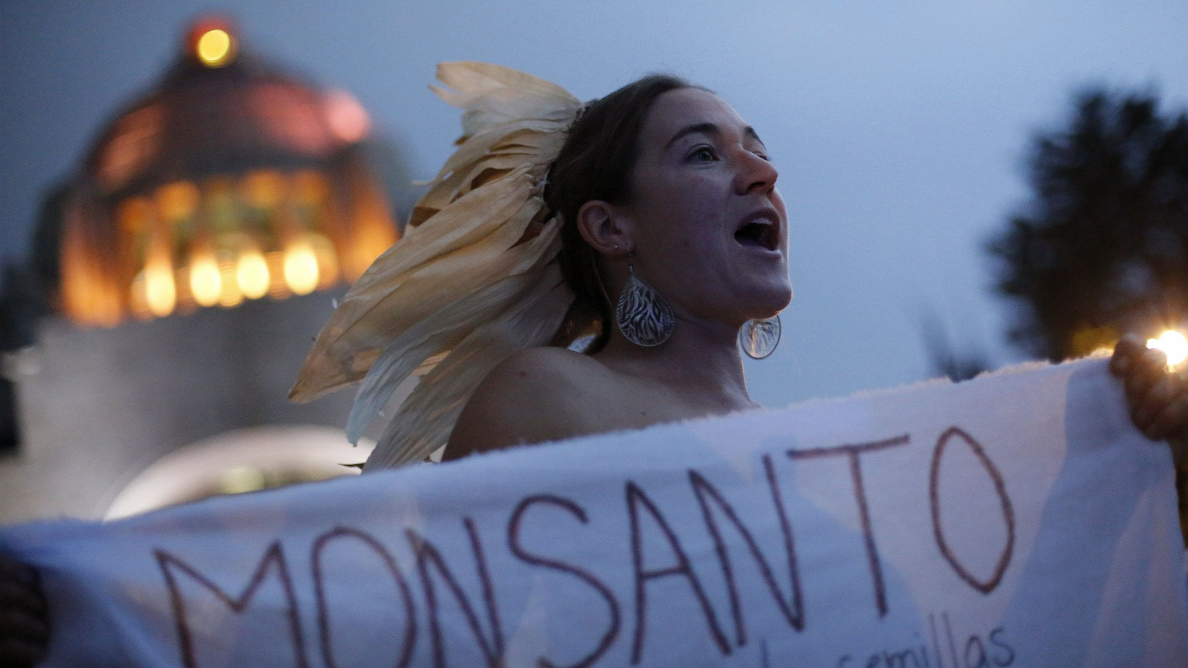 A demonstrator holds a banner protesting against Monsanto Co