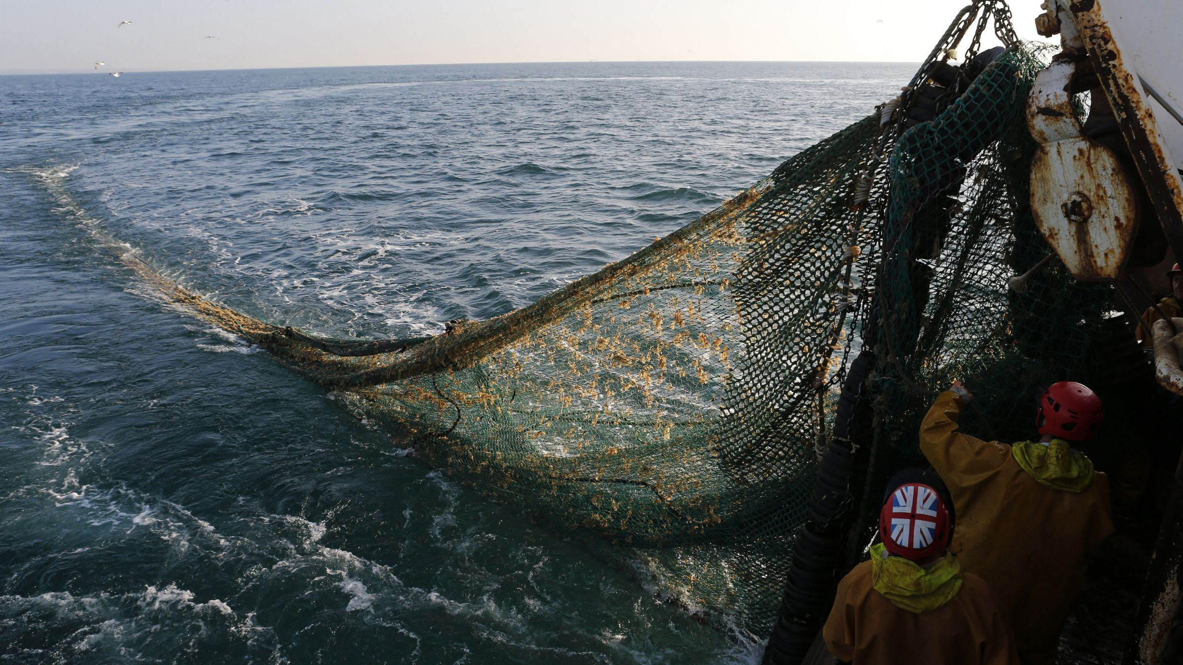"overfishing subsidy net sustainable Fishermen on the Boulogne sur Mer based trawler ""Nicolas Jeremy"" raise the fishing nets, off the coast of northern France September 23, 2013. Fishermen will not get European Union subsidies to build new vessels, EU lawmakers agreed on October 23. Voting on how to allocate nearly 1 billion euros ($1.4 billion) in annual fisheries subsidies up to 2020, the European Parliament said more money should be spent on assessing the state of Europe's depleted stocks. If confirmed in talks with governments, the proposals could spell relief for the estimated 75 percent of EU fish stocks that the European Commission says are over-fished. Picture taken September 23, 2013. REUTERS/Pascal Rossignol"