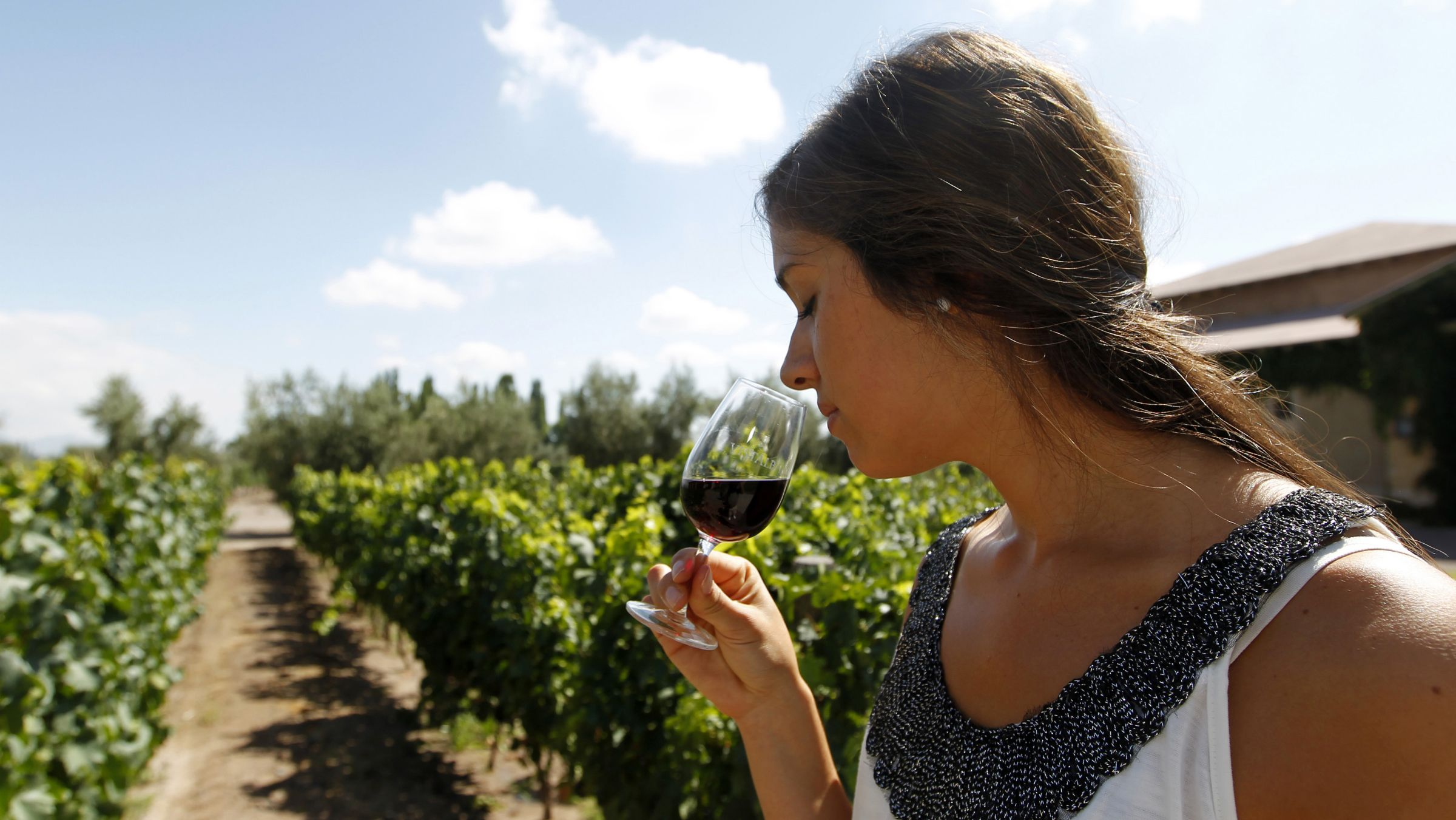 climate change wine vineyard Macarena Villalon tastes a glass of wine at a vineyard of the CAP Vistalba winery in Mendoza February 1, 2013. Argentina is the world's sixth largest wine-producing country, according to the FAO (Food and Agriculture Organization of the United Nations), with the eastern flank of the Andes near Mendoza being its premier region. REUTERS/Enrique Marcarian