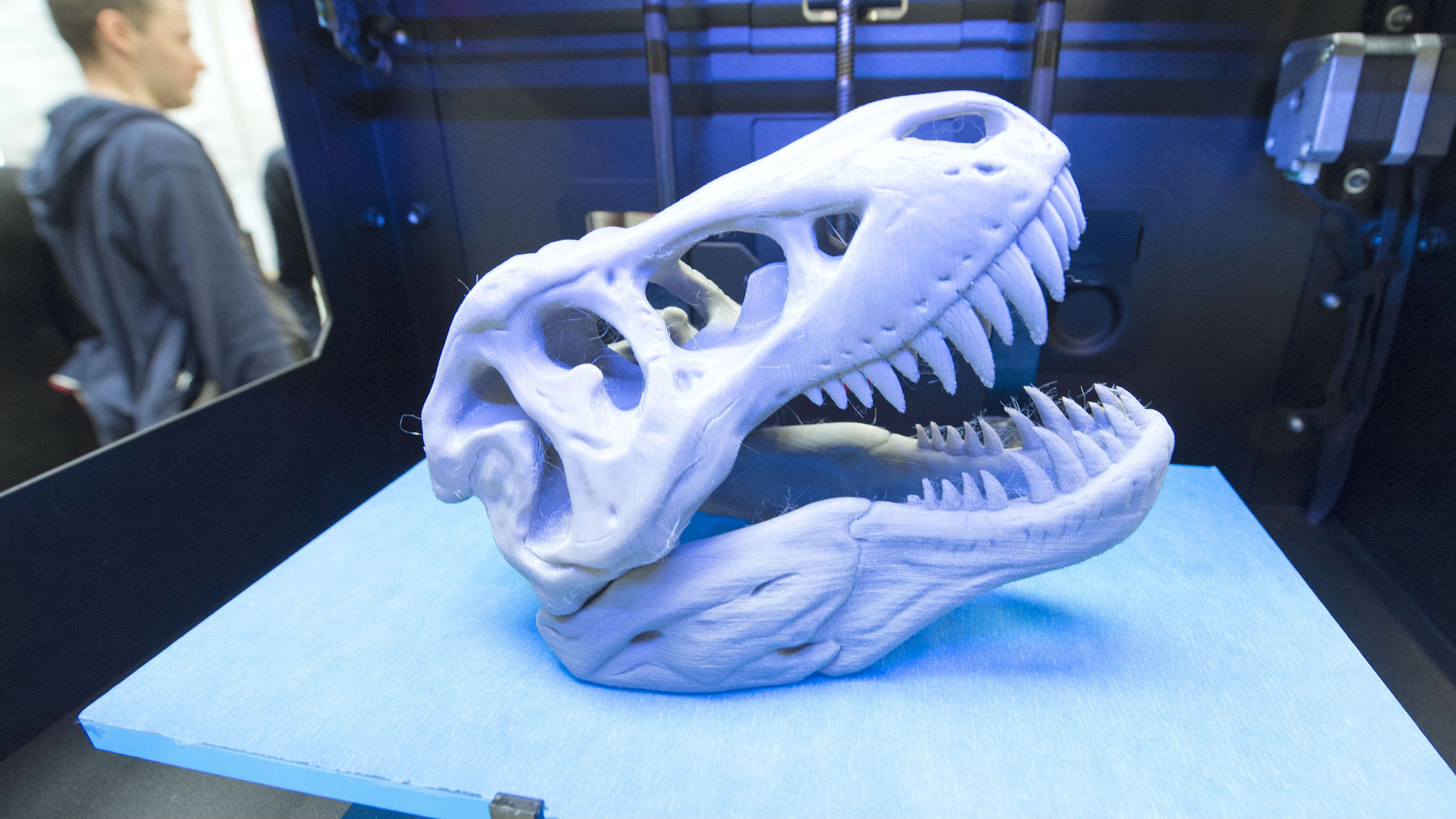 A 3D print of a dinosaur's head lies in a printer of the US company MakerBot of New York during the international fairs FabCon 3.D and Rapid.Tech in Erfurt, Germany, Thursday, May 15, 2014. 130 exhibitors from all over the world present the entire world of 3D printing. The trade fairs are accompanied by specialist programs featuring 80 scientists, practitioners and trend analysts from ten countries, who will explain the latest findings, trends and applications for additive processes in industry and for 3D printing in the private sector to newcomers, experts and consumers alike.