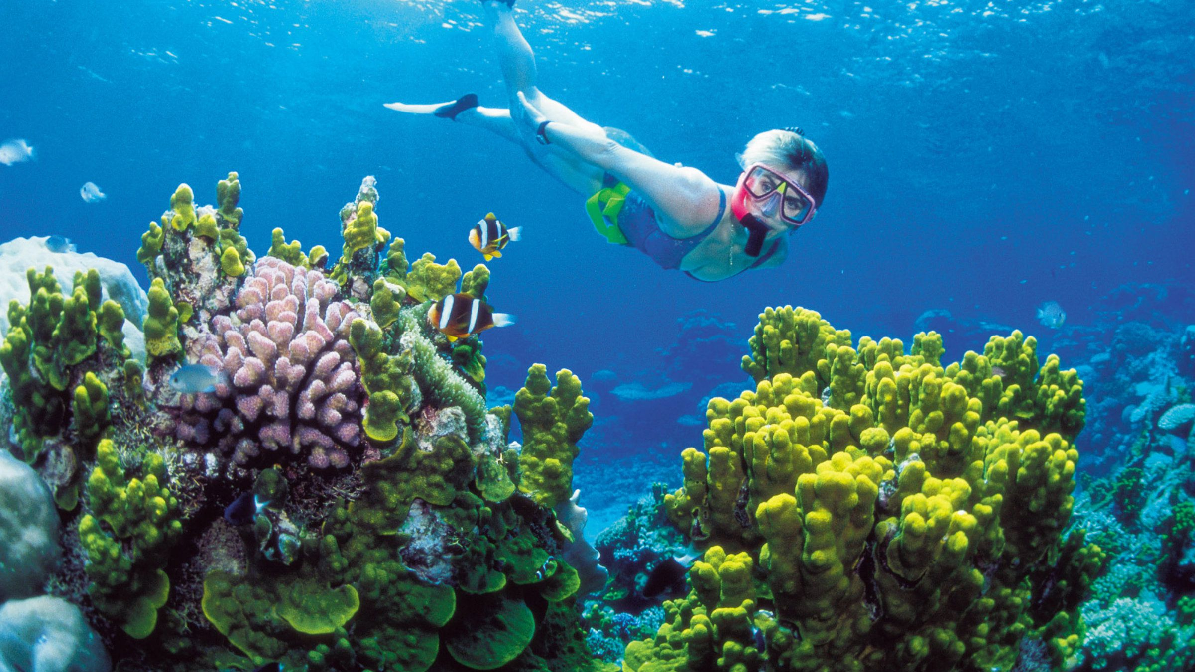 An unidentified woman snorkels on the Great Barrier Reef off Australia's Queensland state.
