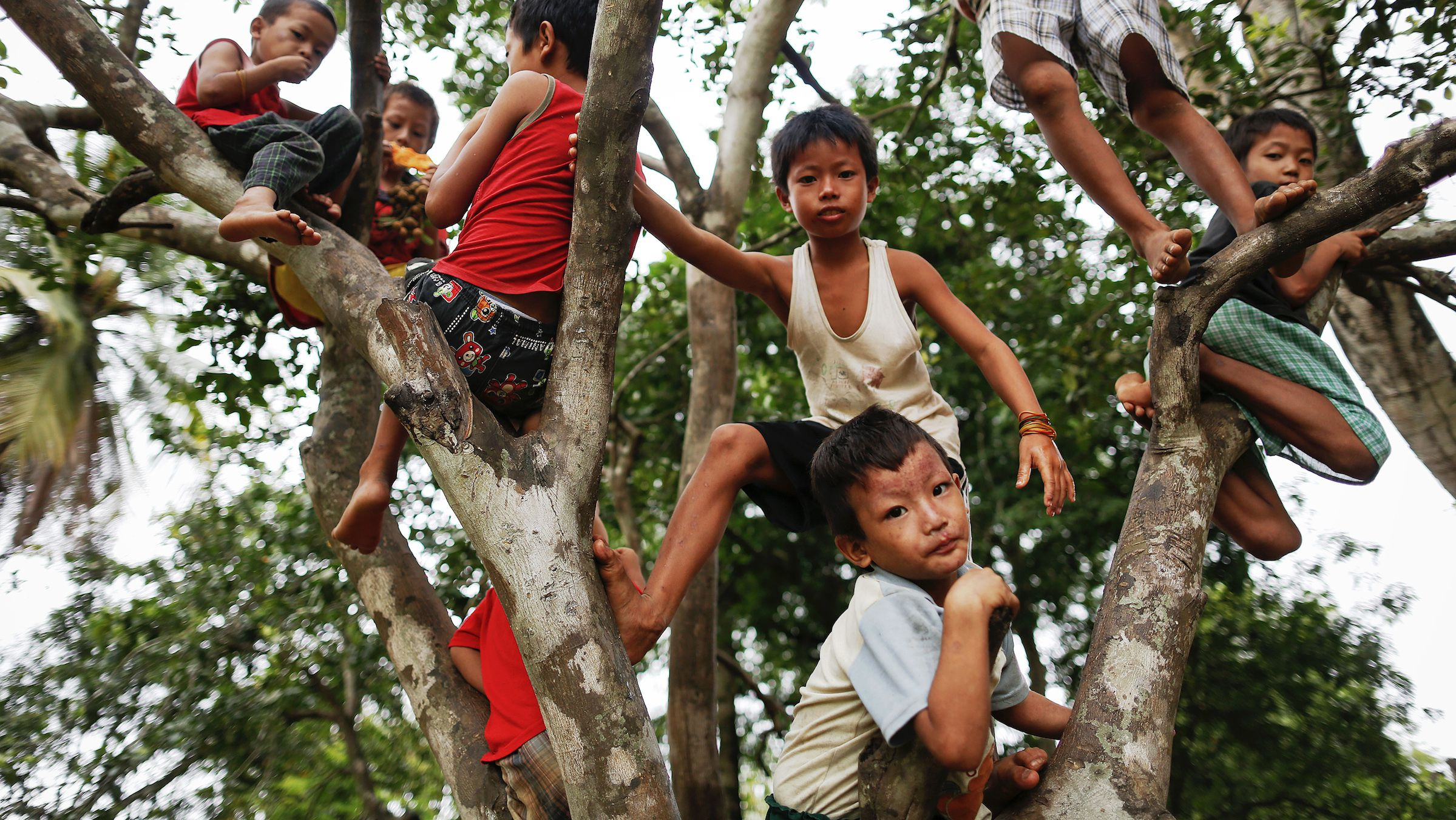 Children climb a tree at a camp for internally displaced persons in the suburbs of Myitkyina, the capital of Kachin State July 7, 2013. Thousands fled when fighting erupted between Myanmar government troops and the Kachin Independence Army (KIA) after a ceasefire collapsed in June 2011. There are now at least 85,000 internally displaced persons in Kachin and neighboring Shan State, says the United Nations. REUTERS/Damir Sagolj (MYANMAR - Tags: SOCIETY CIVIL UNREST) - RTX11FLK