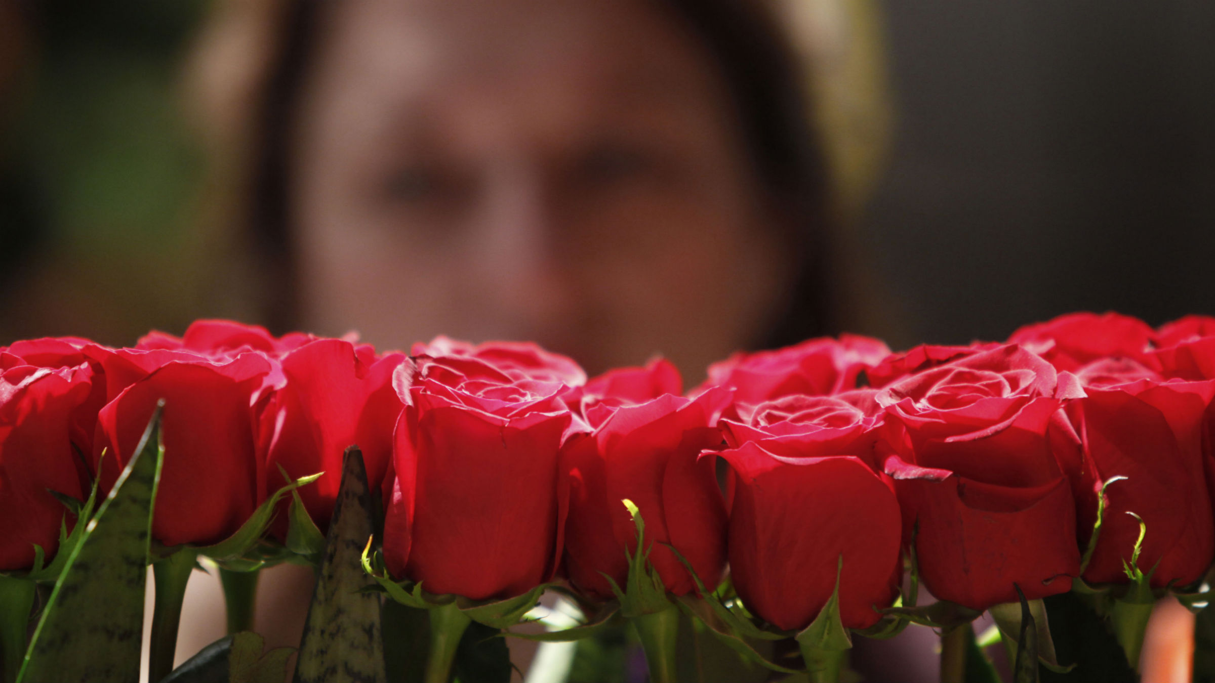 A floral designer arranges roses in preparation for the 2010 Philadelphia Flower show at the Pennsylvania Convention Center in Philadelphia, Friday, Feb. 26, 2010. The theme of the 2010 show, which is scheduled to open Feb. 28 and run through March 7, is Passport to the World.