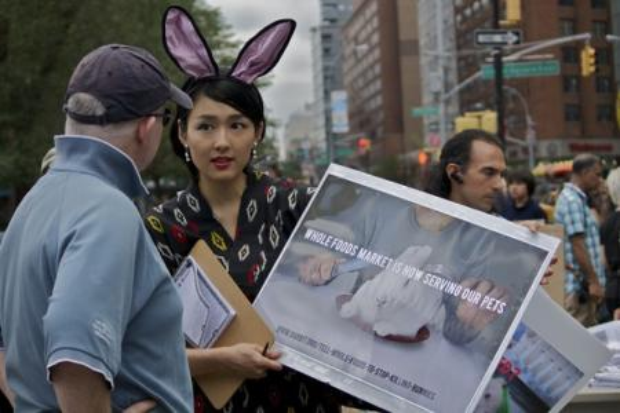 Rabbit meat protestor