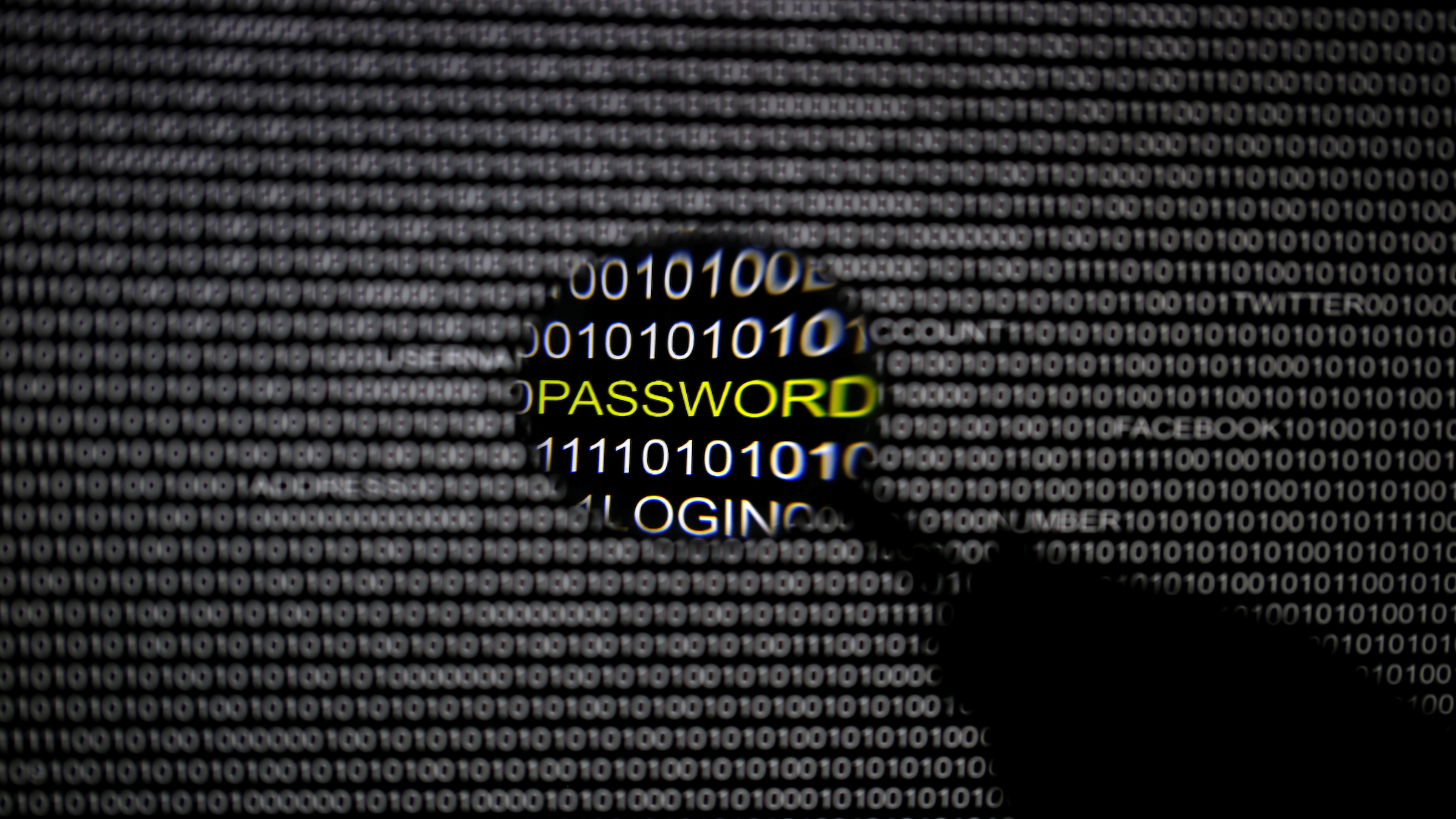 A magnifying glass is held in front of a computer screen in this picture illustration taken in Berlin May 21, 2013. The Financial Times' website and Twitter feeds were hacked May 17, 2013, renewing questions about whether the popular social media service has done enough to tighten security as cyber-attacks on the news media intensify. The attack is the latest in which hackers commandeered the Twitter account of a prominent news organization to push their agenda. Twitter's 200 million users worldwide send out more than 400 million tweets a day, making it a potent distributor of news. REUTERS/Pawel Kopczynski   (GERMANY - Tags: CRIME LAW SCIENCE TECHNOLOGY) - RTXZUYH