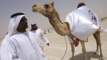 A camel breeder stands next to one of his prized animals during the Mayazin Dhafra Camel festival to be held until April 10 in the outkskirts of Zayed City, south-west of Abu Dhabi.