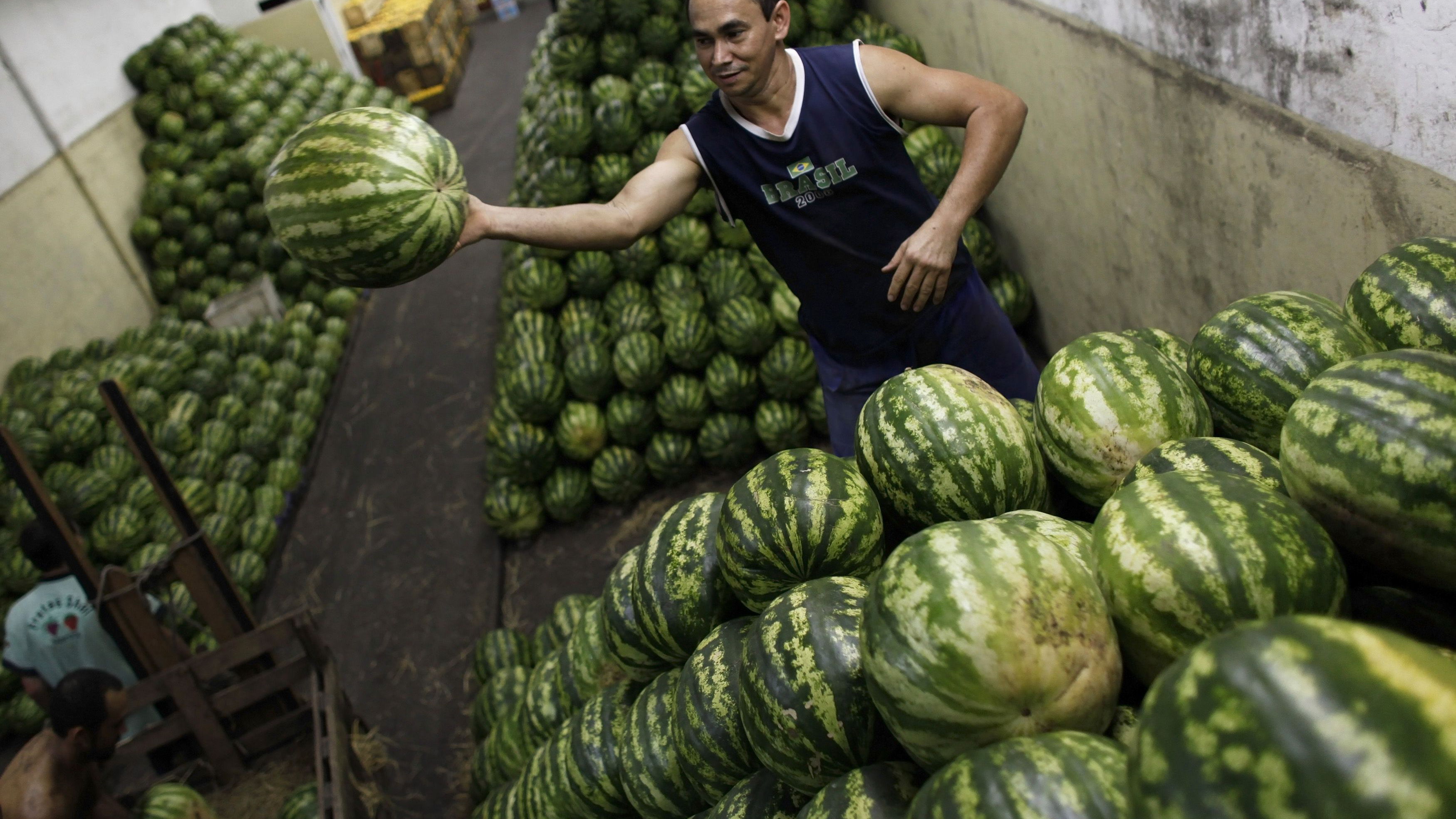 A worker arranges watermelons inside a wholesale supplier, before heading towards markets in Sao Paulo February 1, 2013. The broadest measure of Brazilian inflation eased month on month but accelerated on an annual basis in January, leaving the central bank focused on keeping price pressures in check ahead of an expected pick-up in economic growth later this year. Consumer food prices rose 1.97 percent, compared with an increase of 1.29 percent in December. REUTERS/ Nacho Doce (BRAZIL - Tags: BUSINESS FOOD)