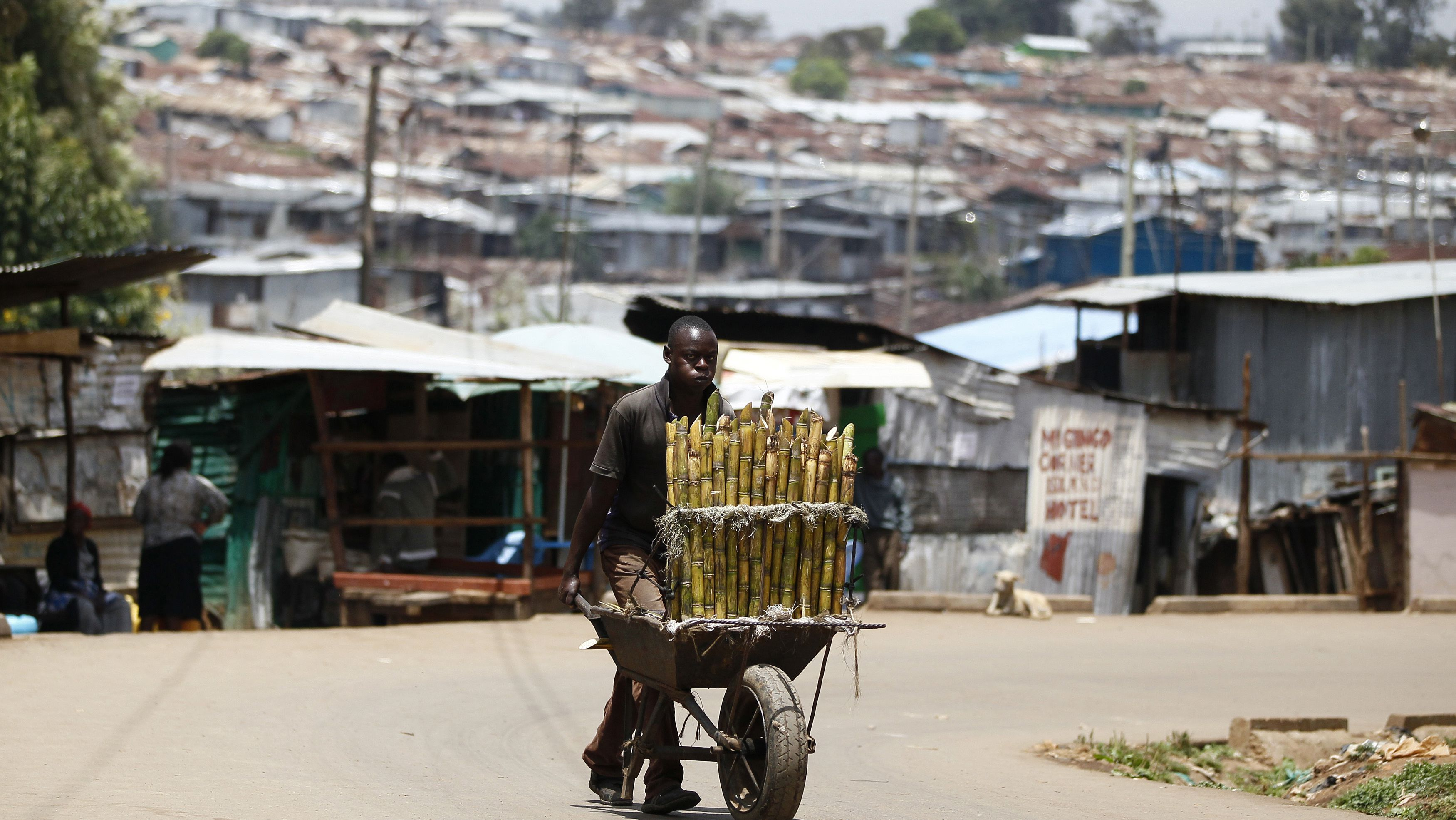 A trader pushes wheelbarrow loaded with sugar-cane for sale along a street in Kibera slum, home to over 1 million people, in Kenya's capital Nairobi, March 7, 2014. REUTERS/Thomas Mukoya (KENYA - Tags: CITYSCAPE SOCIETY)