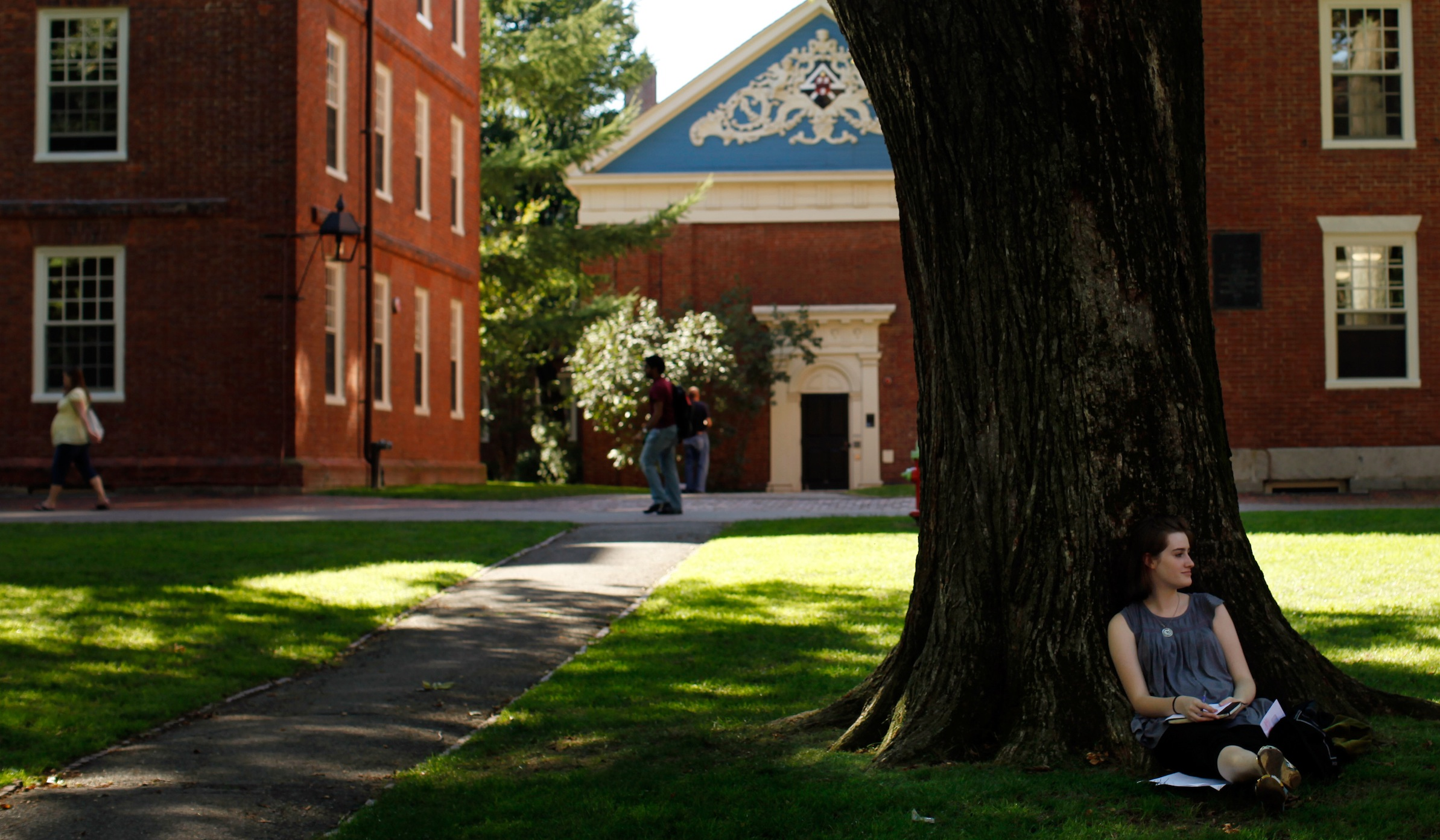 A student sits under a tree in Harvard Yard at Harvard University in Cambridge, Massachusetts September 21, 2009.   REUTERS/Brian Snyder    (UNITED STATES) - RTR285OR