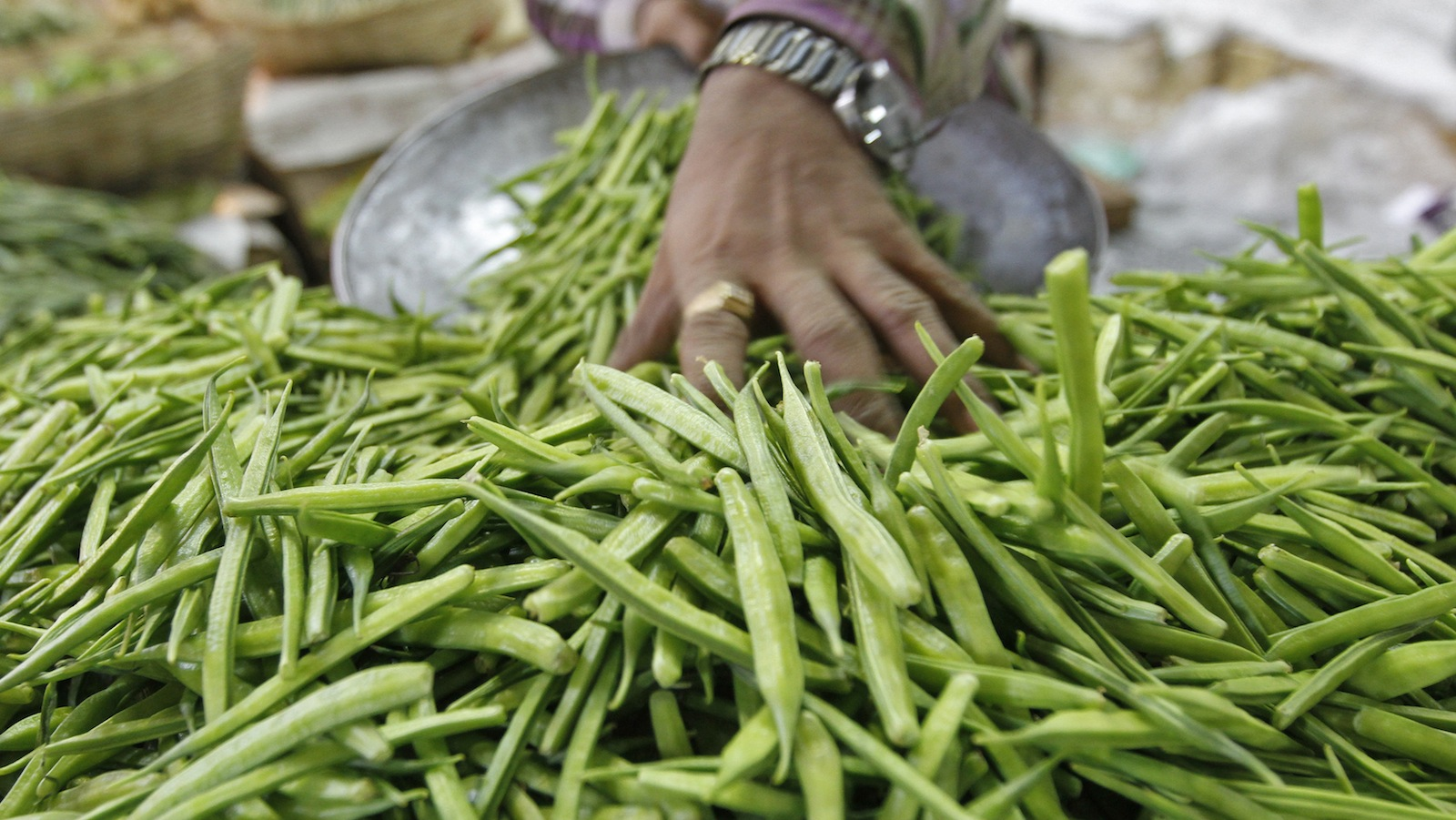 America's shale gas boom brought Rajasthan farmers a ...