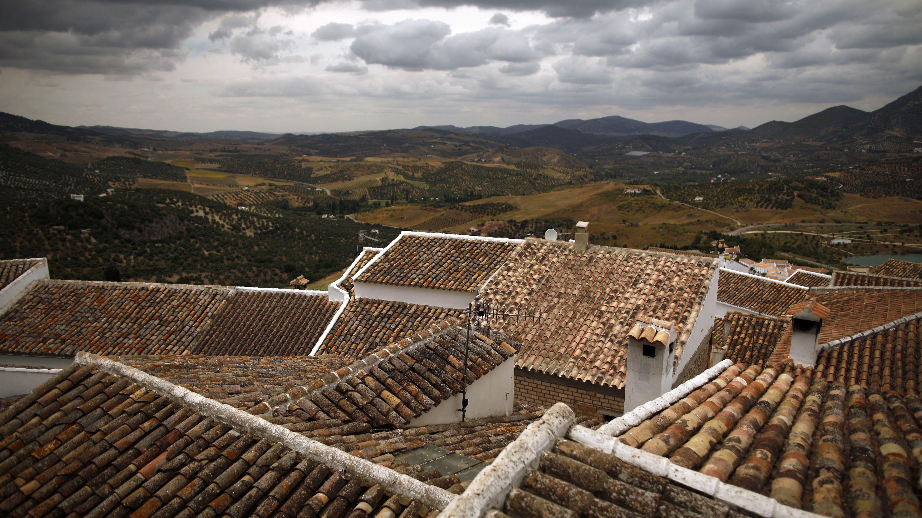 The tiled roofs of houses are seen in Zahara de la Sierra, southern Spain June 22, 2014. REUTERS/Jon Nazca