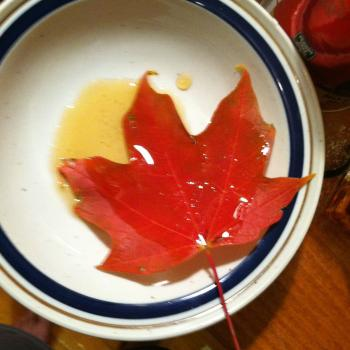 leaf in syrup
