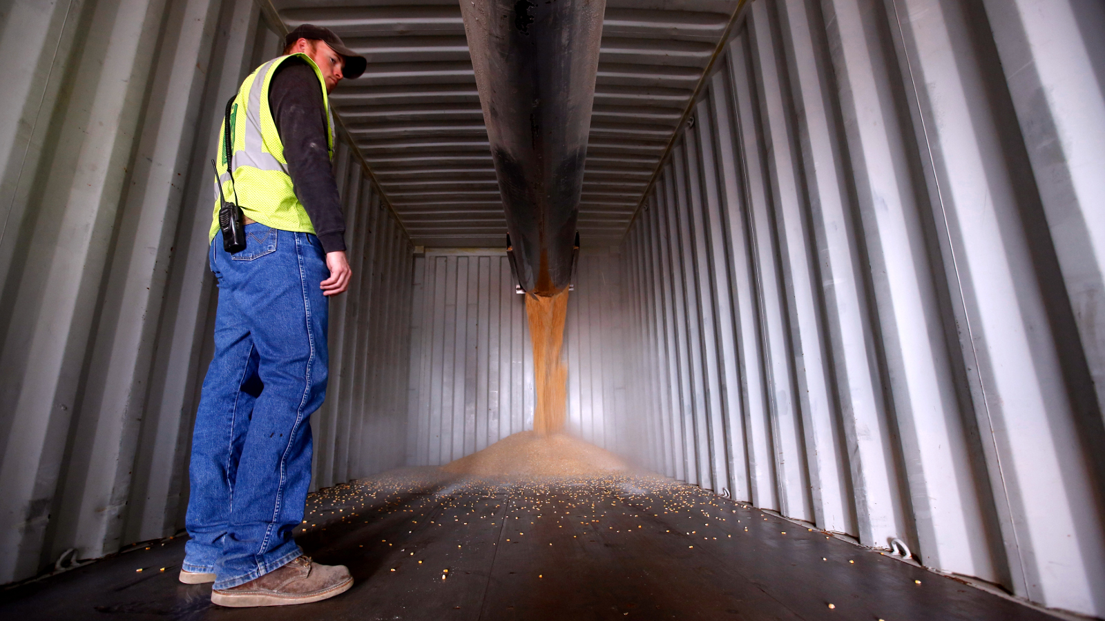 A worker looks on as a shipping container is loaded with corn at DeLong Company in Minooka, Illinois, September 24, 2014.. Corn prices, trying to consolidate after falling to a four-year low as a record-large U.S. harvest pick up speed and as continued reports of spectacular early U.S. yields and softening cash markets hang over the market. Contracts held above lifetime lows in overnight trade. Photo taken September 24, 2014.