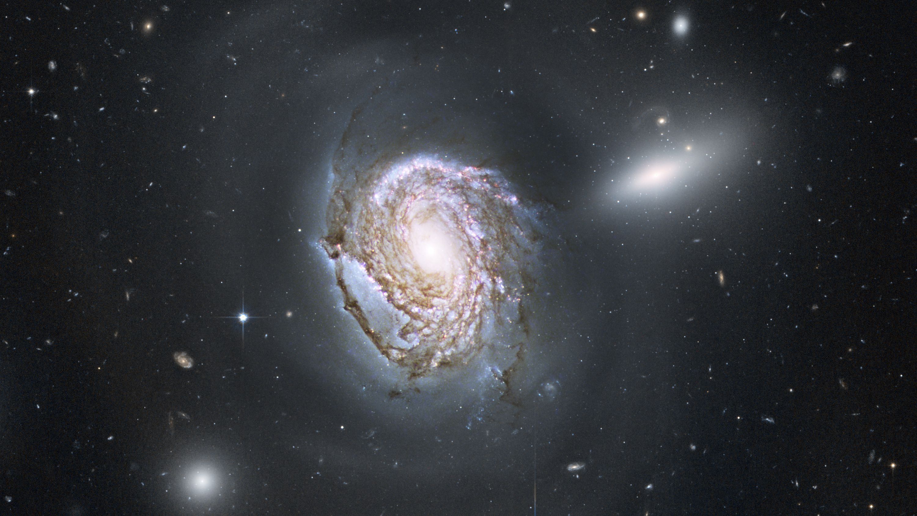 This image provided by NASA Tuesday Aug. 10, 2010 shows a long-exposure Hubble Space Telescope image of the majestic face-on spiral galaxy NGC4911 located deep within the Coma Cluster of galaxies, which lies 320 million light-years away in the northern constellation Coma Berenices. (AP Photo/NASA)