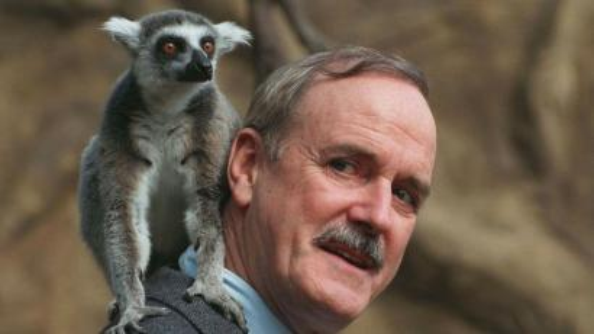 John Clesse lemur